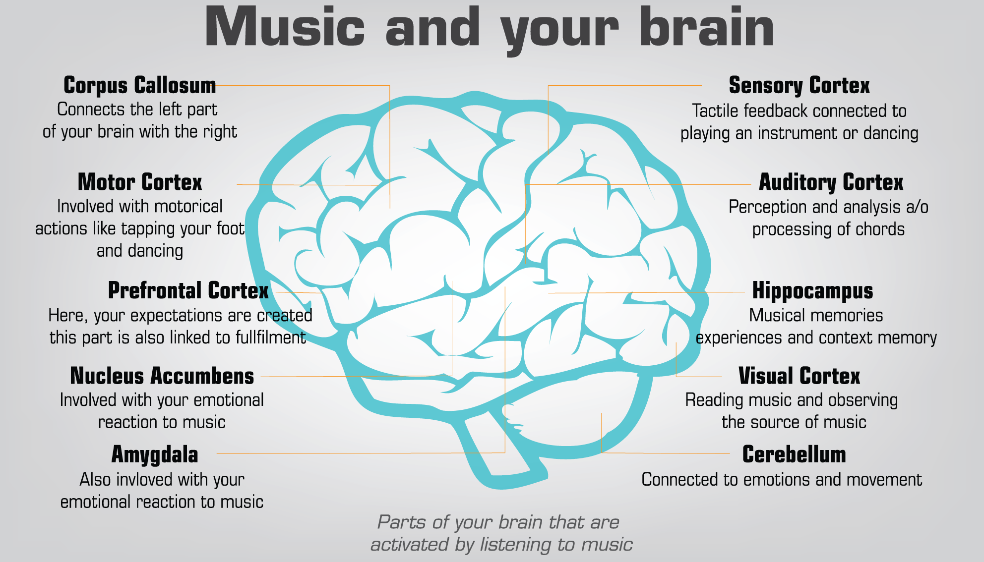 Image result for music and your brain