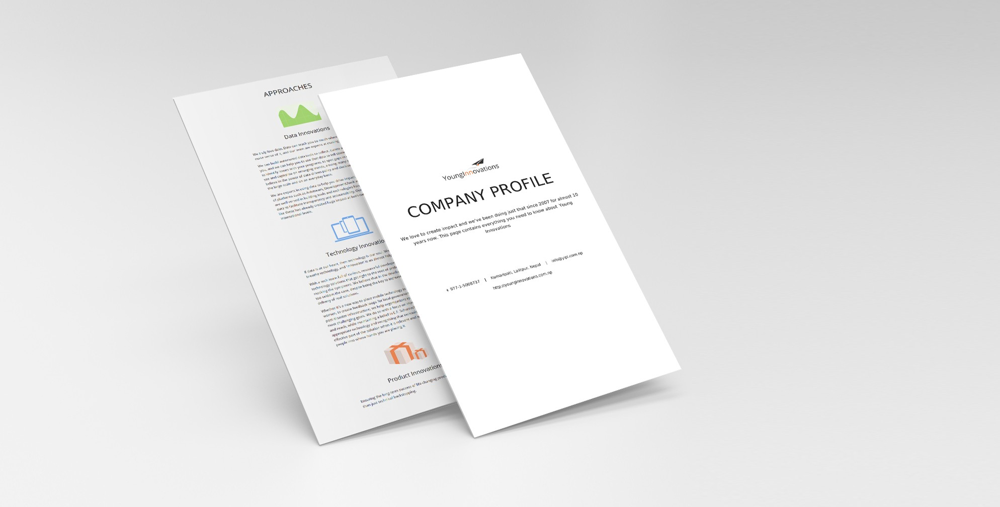 Developing Company Profile page of YoungInnovations