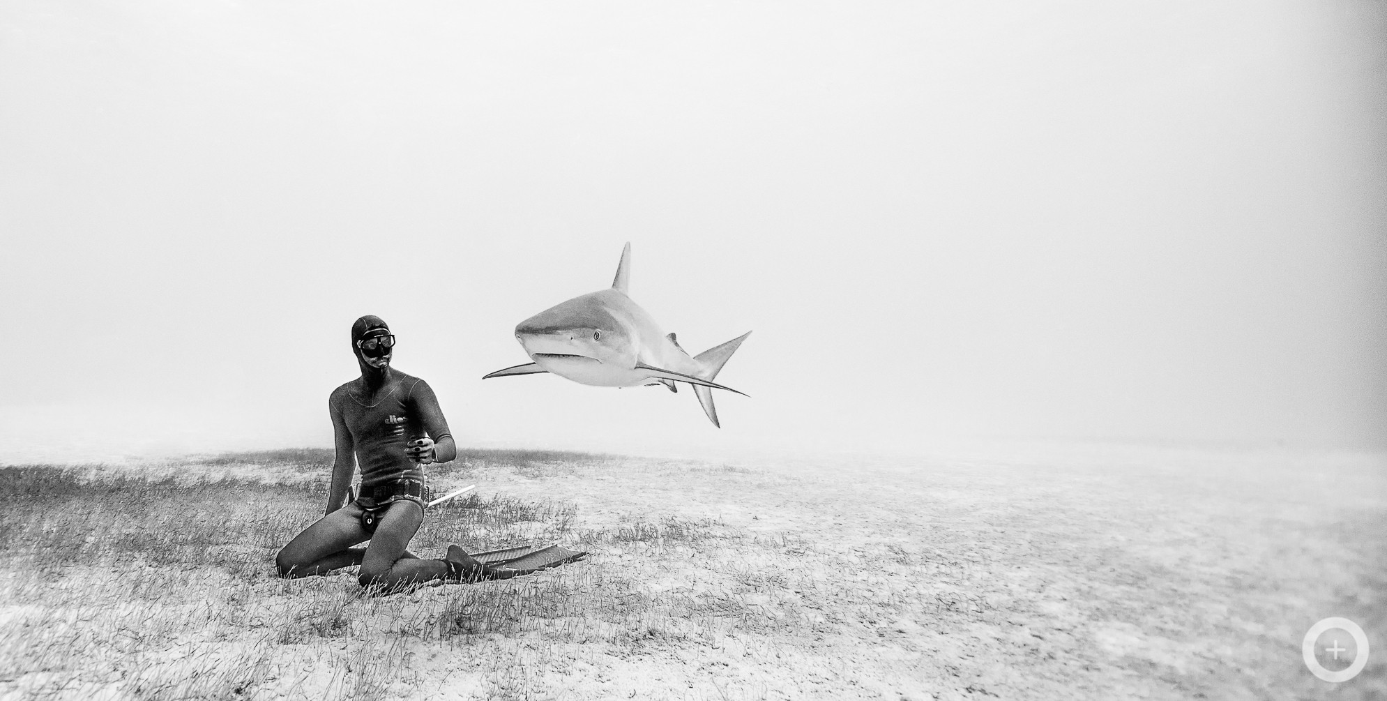 Meet the Freediving Couple Who Make Stunning Underwater Photos With