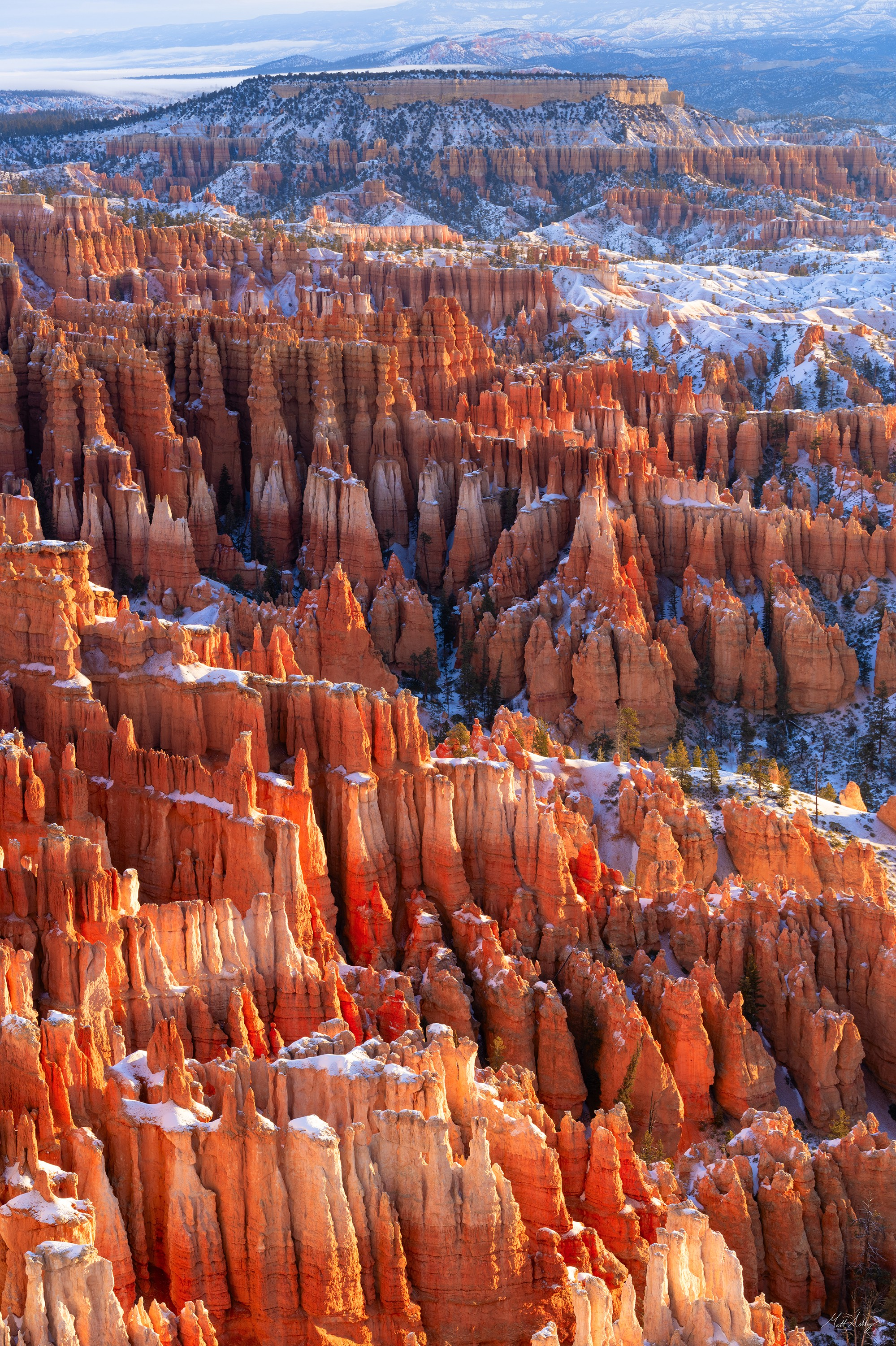 Vertical panorama of orange and red hoodoos in Bryce Canyon National Park.