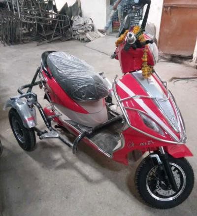 Tunwal Electric Scooter Storm Zx Handicapped Side Wheel