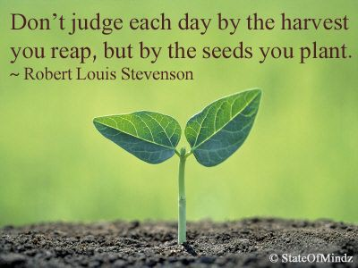It S Not The Harvest You Reap But The Seeds You Sow