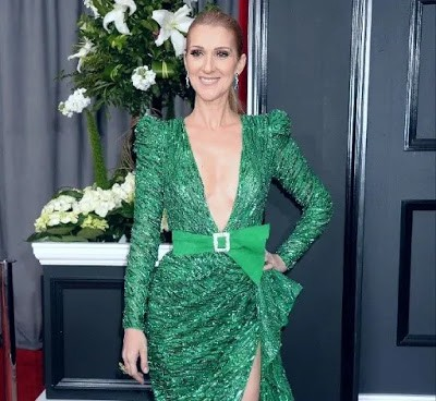 Celine Dion Weight Loss Reason Revealed — How Did The ...