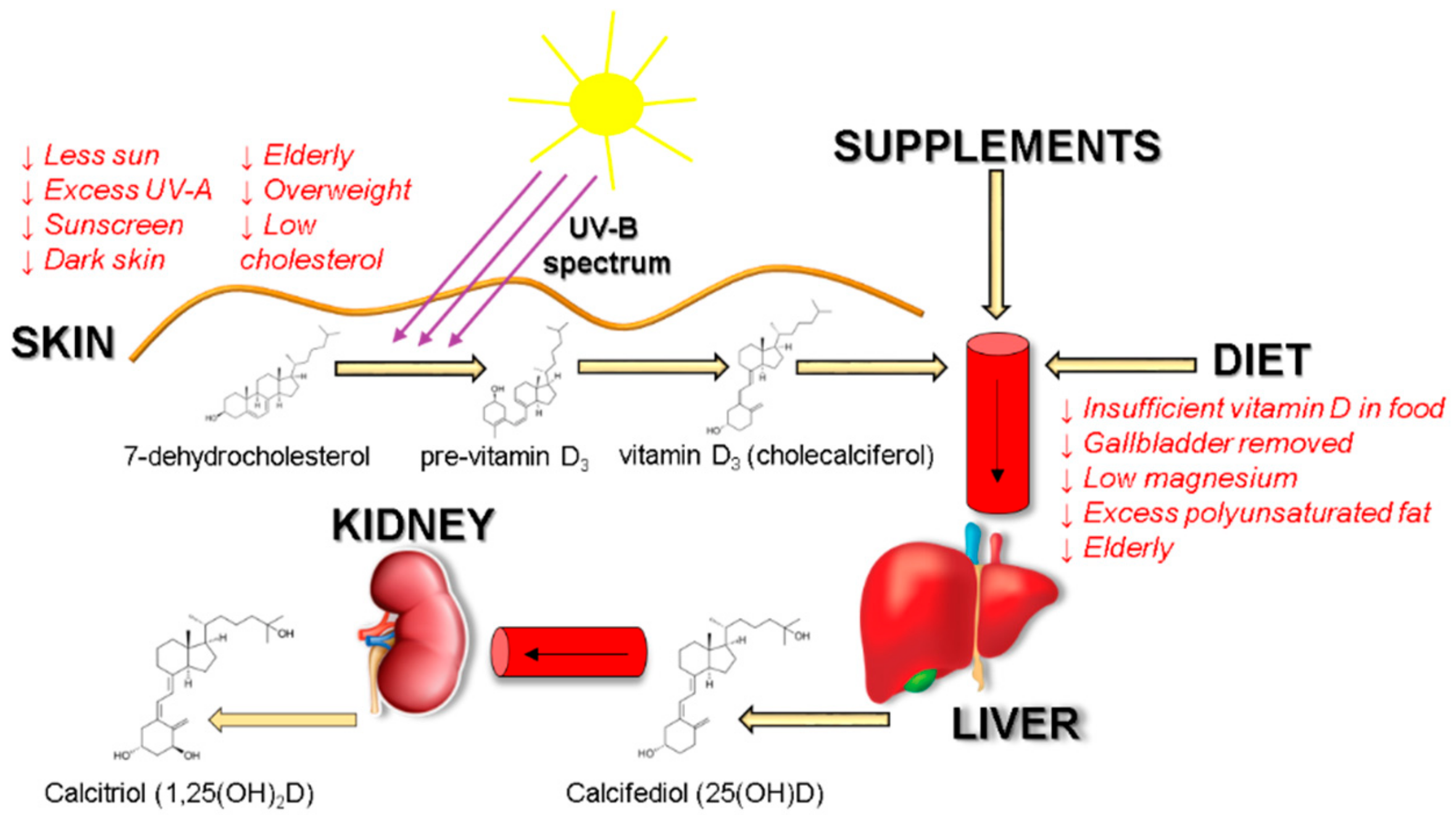 The First Clinical Trial To Support Vitamin D Therapy For Covid 19 By Shin Jie Yong Microbial Instincts Sep 2020 Medium