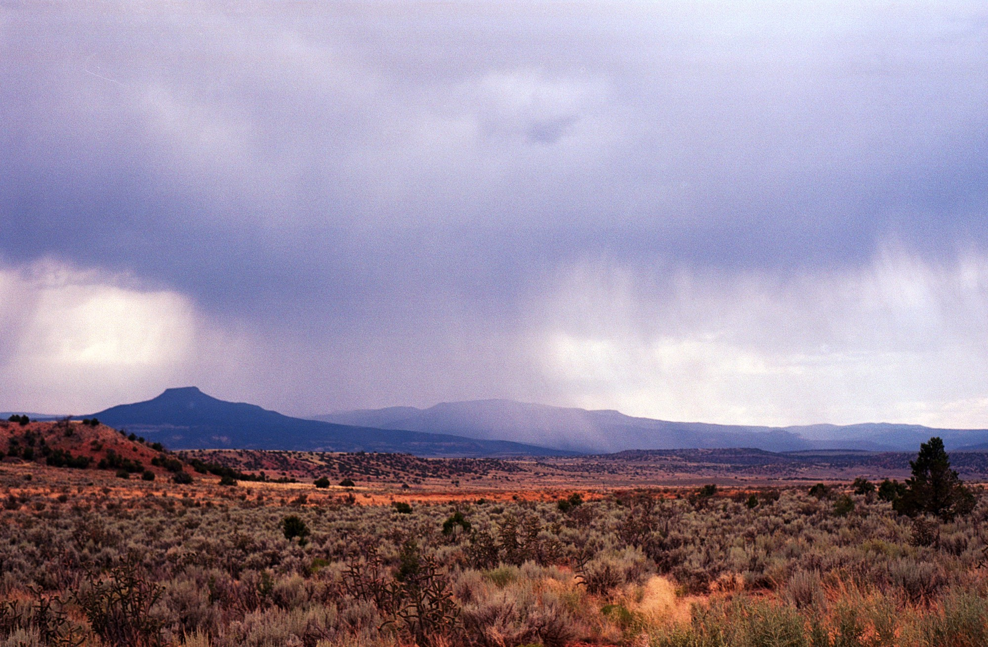 Color photograph of a rainstorm over the desert mesas in New Mexico, from a distance so you can see the whole patch of rain
