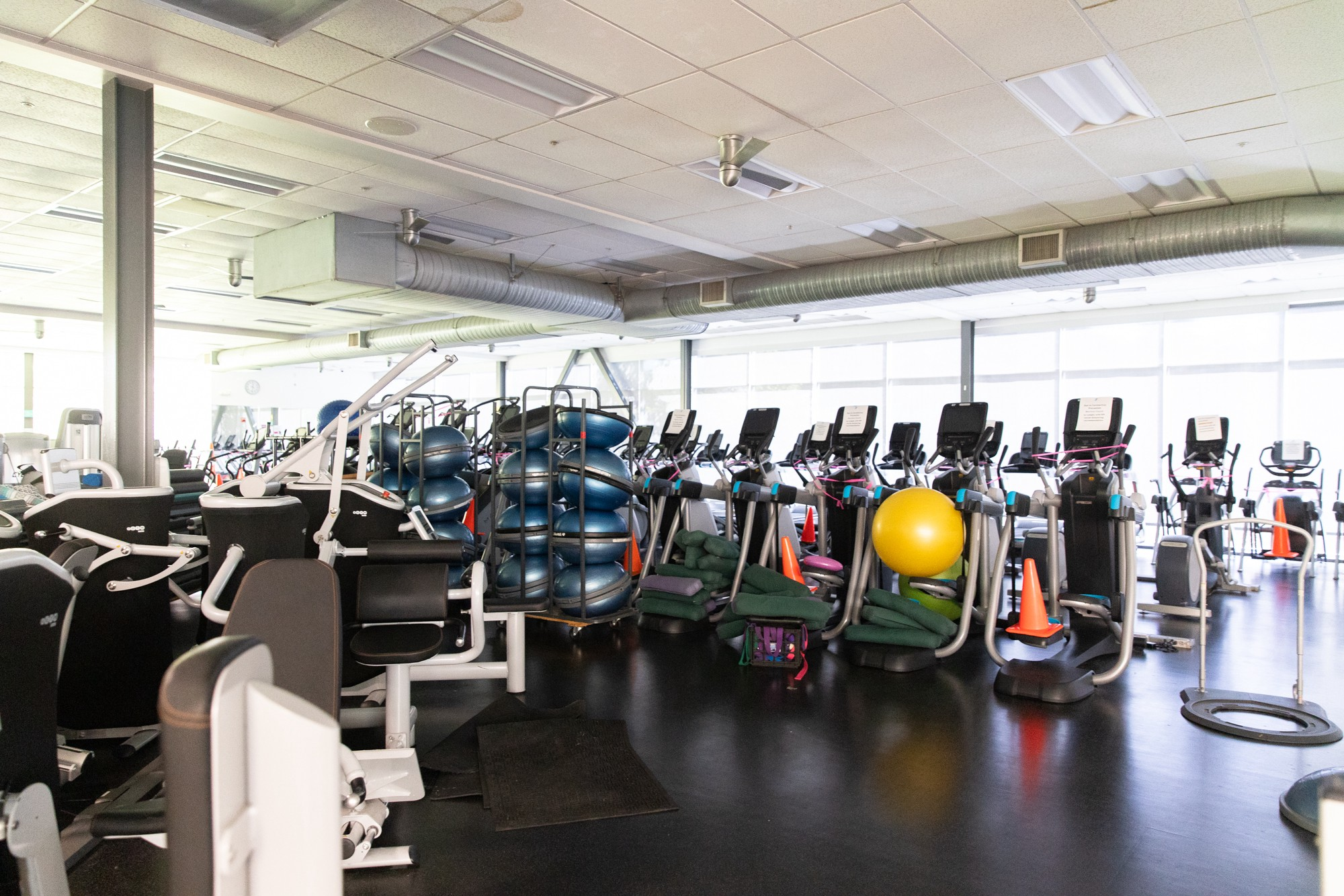 Shuttered Gyms Dumbbell Price Gouging Covid 19 Is Threatening The Peninsula S Diverse Fitness Scene By Kate Bradshaw The Six Fifty