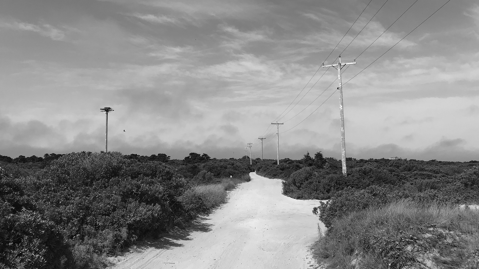 A sandy path with telephone poles on either side