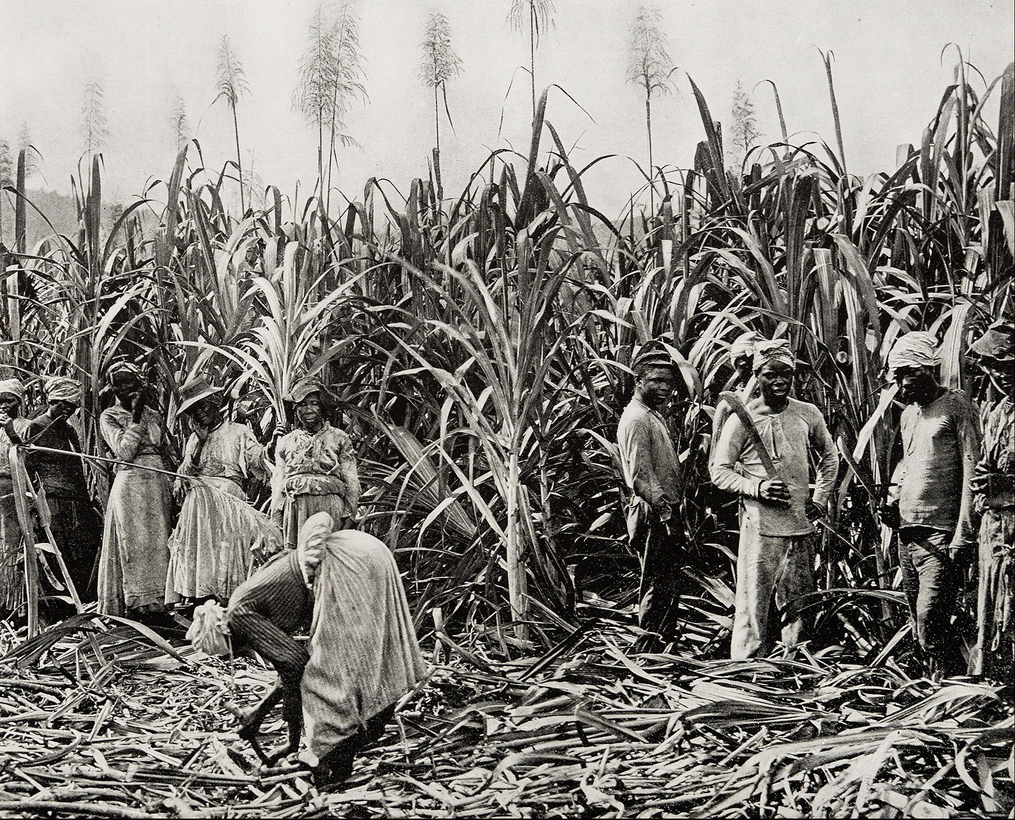 How Slavery in Today's World Impacts Product Development | by ...