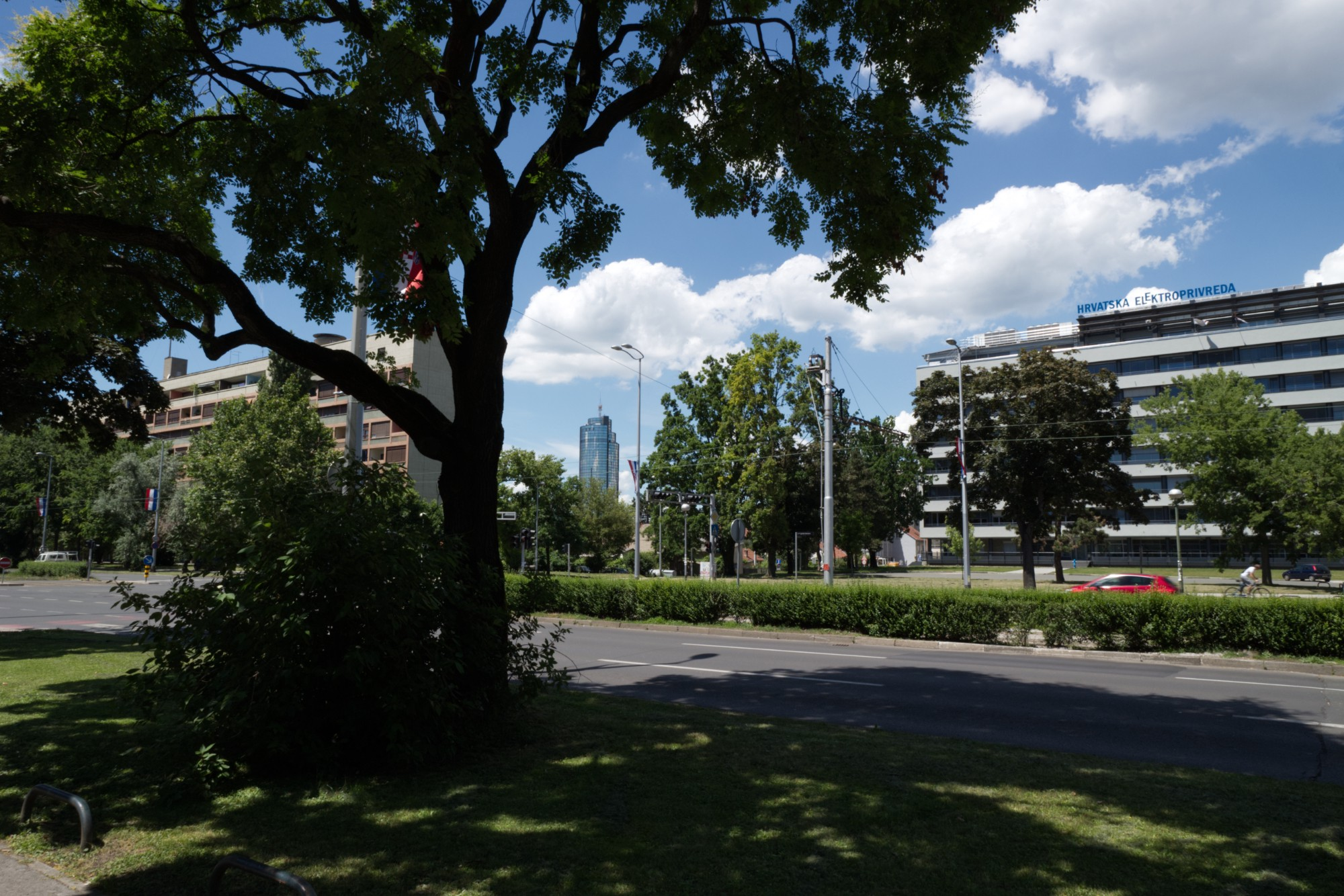 a backlit tree shadowed in the foreground, the city in the background. 60s architecture, greenery. central, in the distance, a famous class circular highrise, the cibona tower.