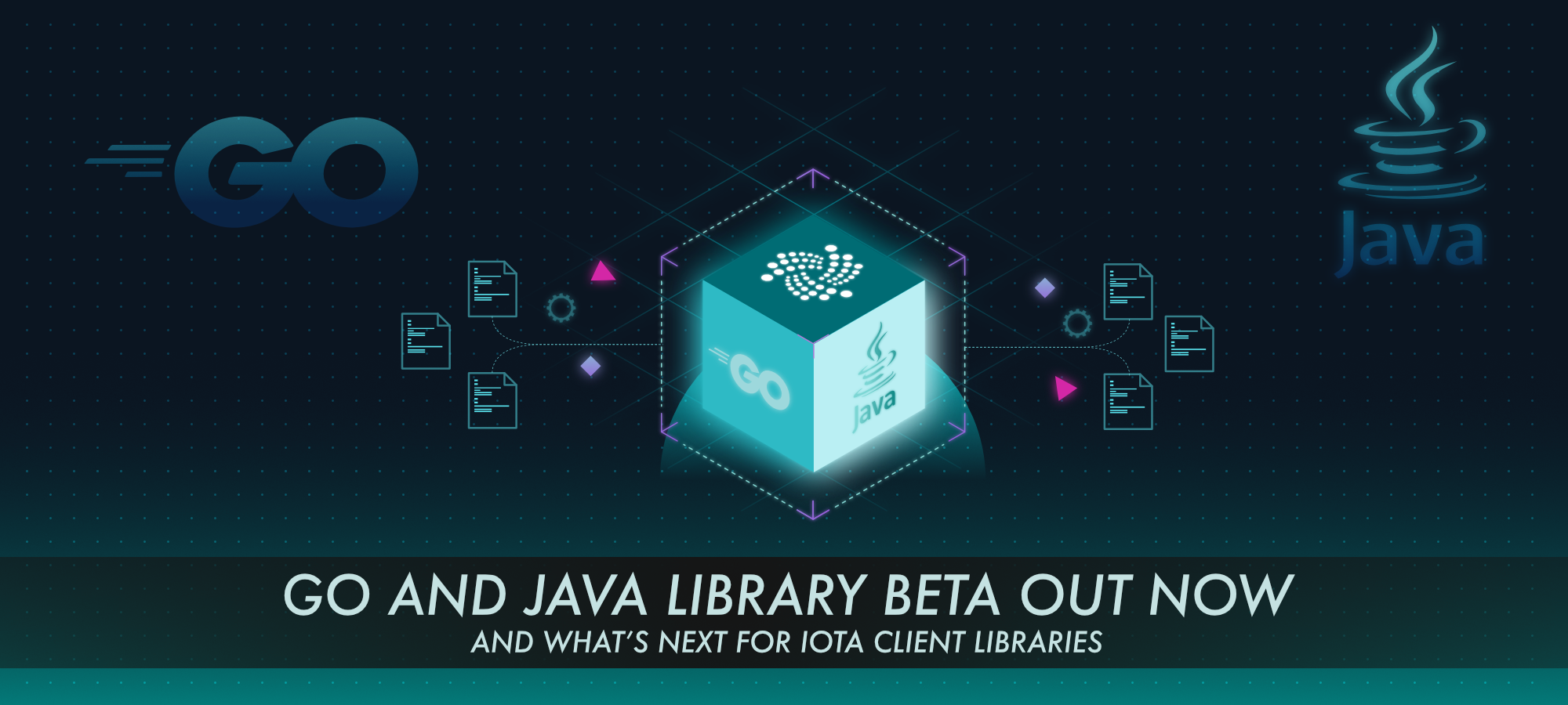 Go and Java library beta out now and what's next for IOTA