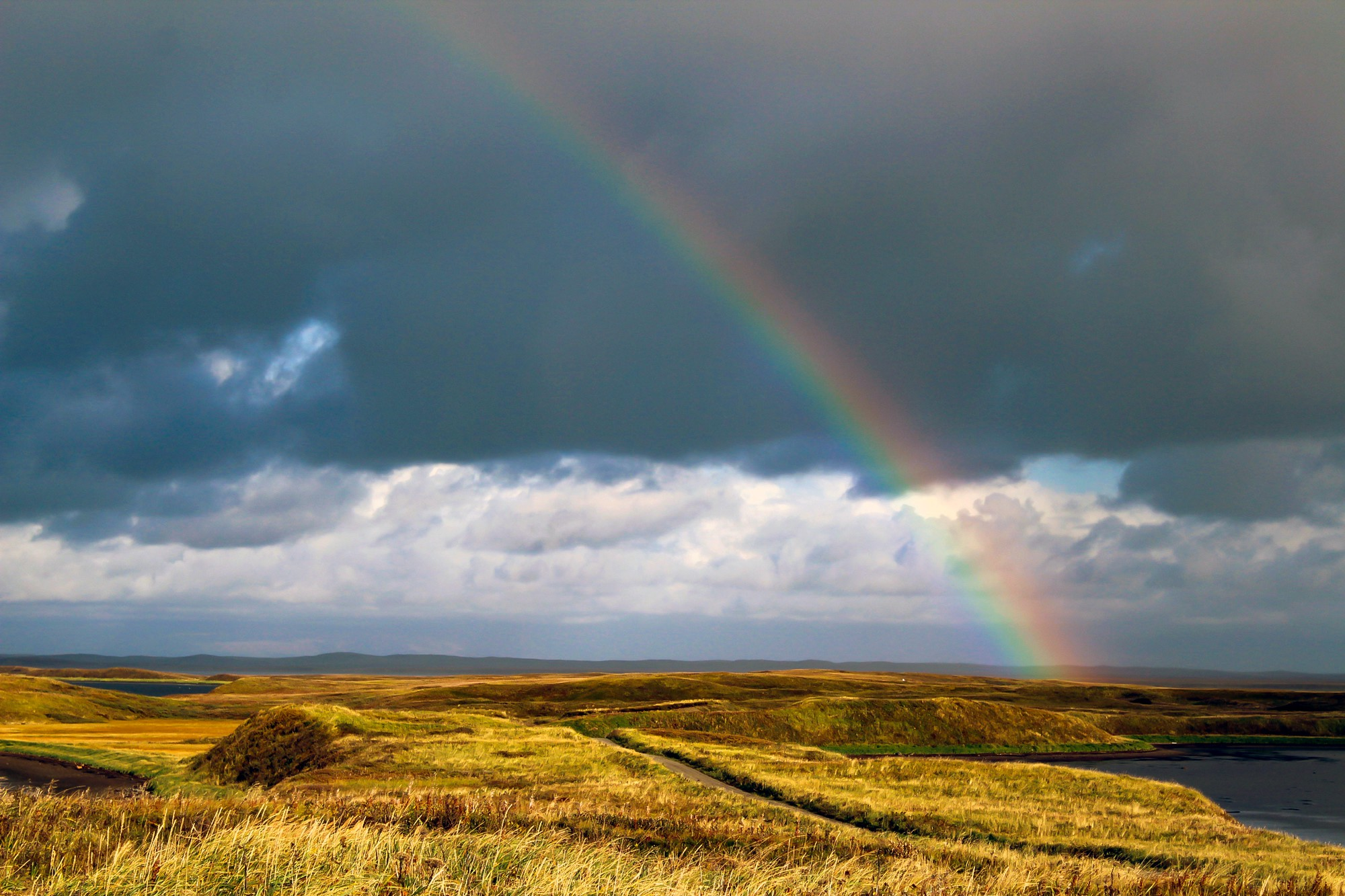 Rainbow over a shoreline and grassland in Izembek National Wildlife Refuge