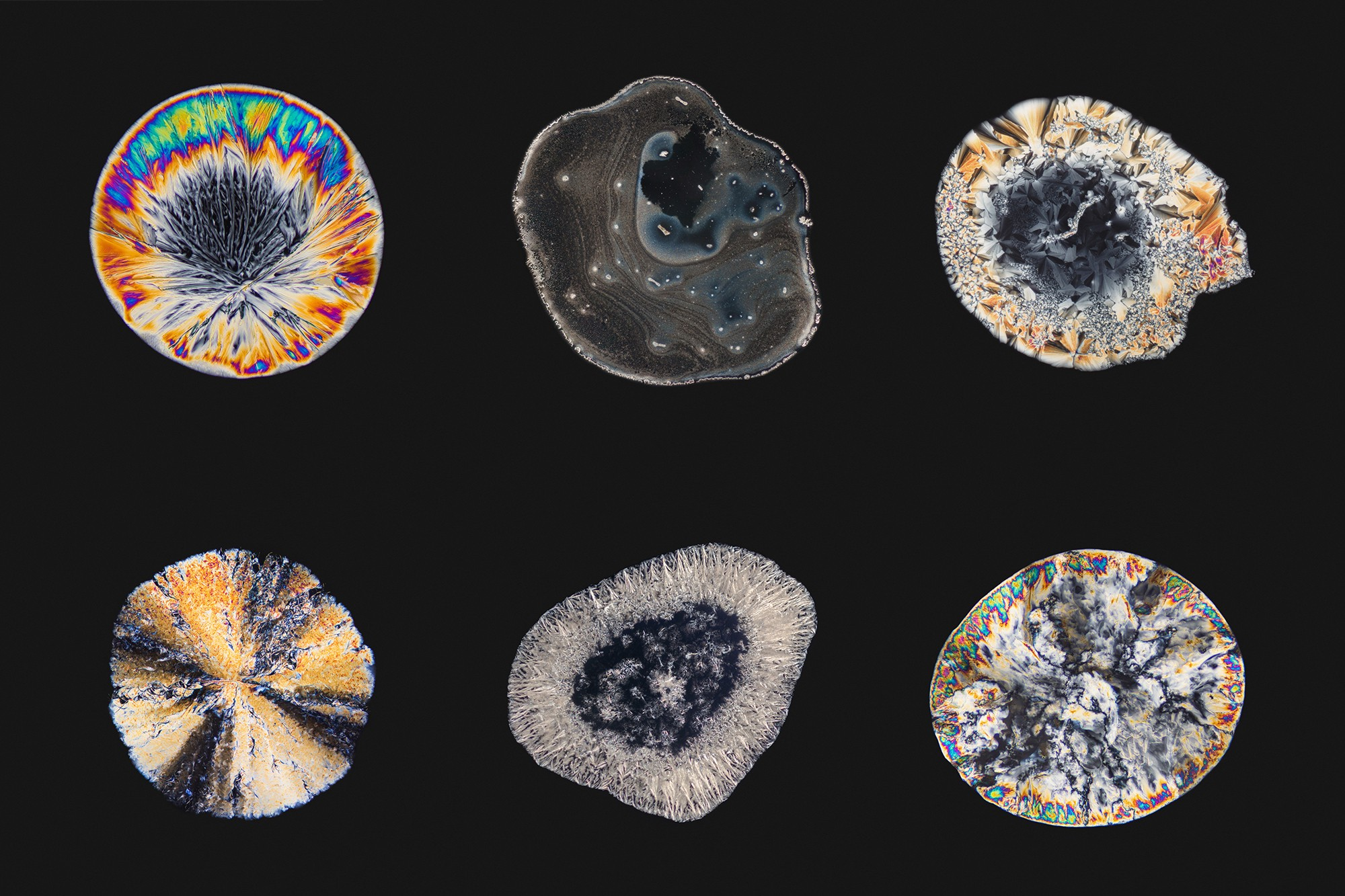 How Micrography sparked my interest in the evolving online