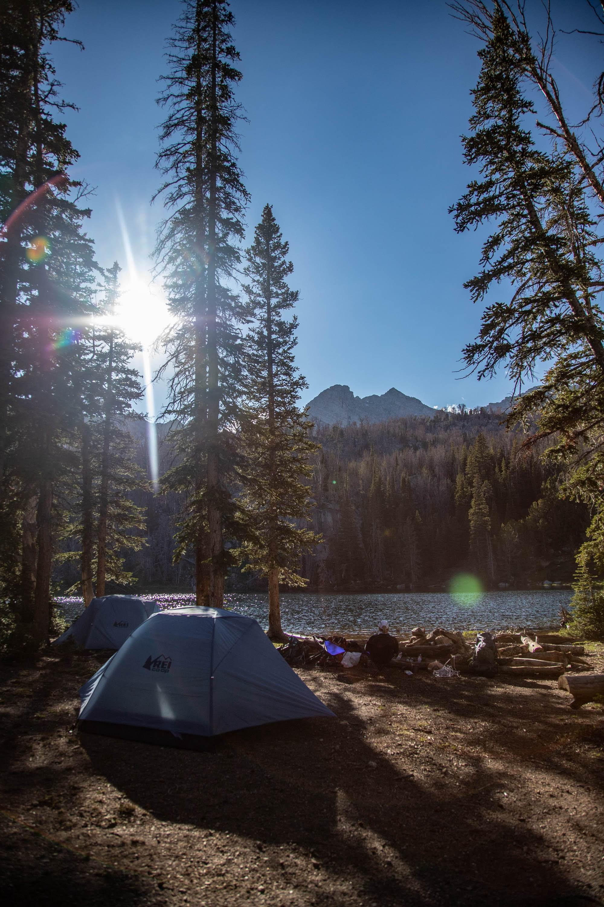 Can Camping Tent Really Help