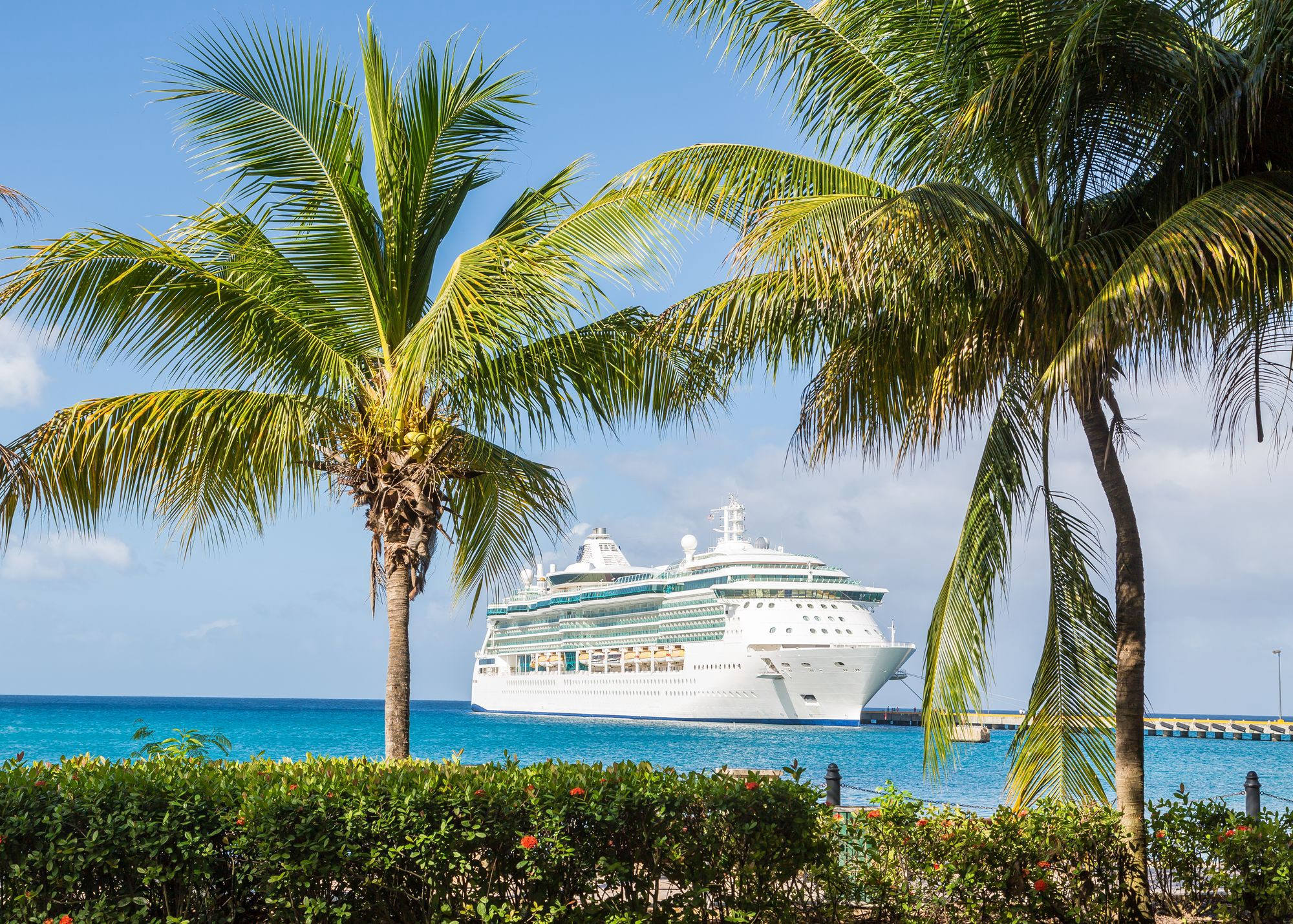 Cruise Ship Image for the Future of Cruising by Darryl Brooks