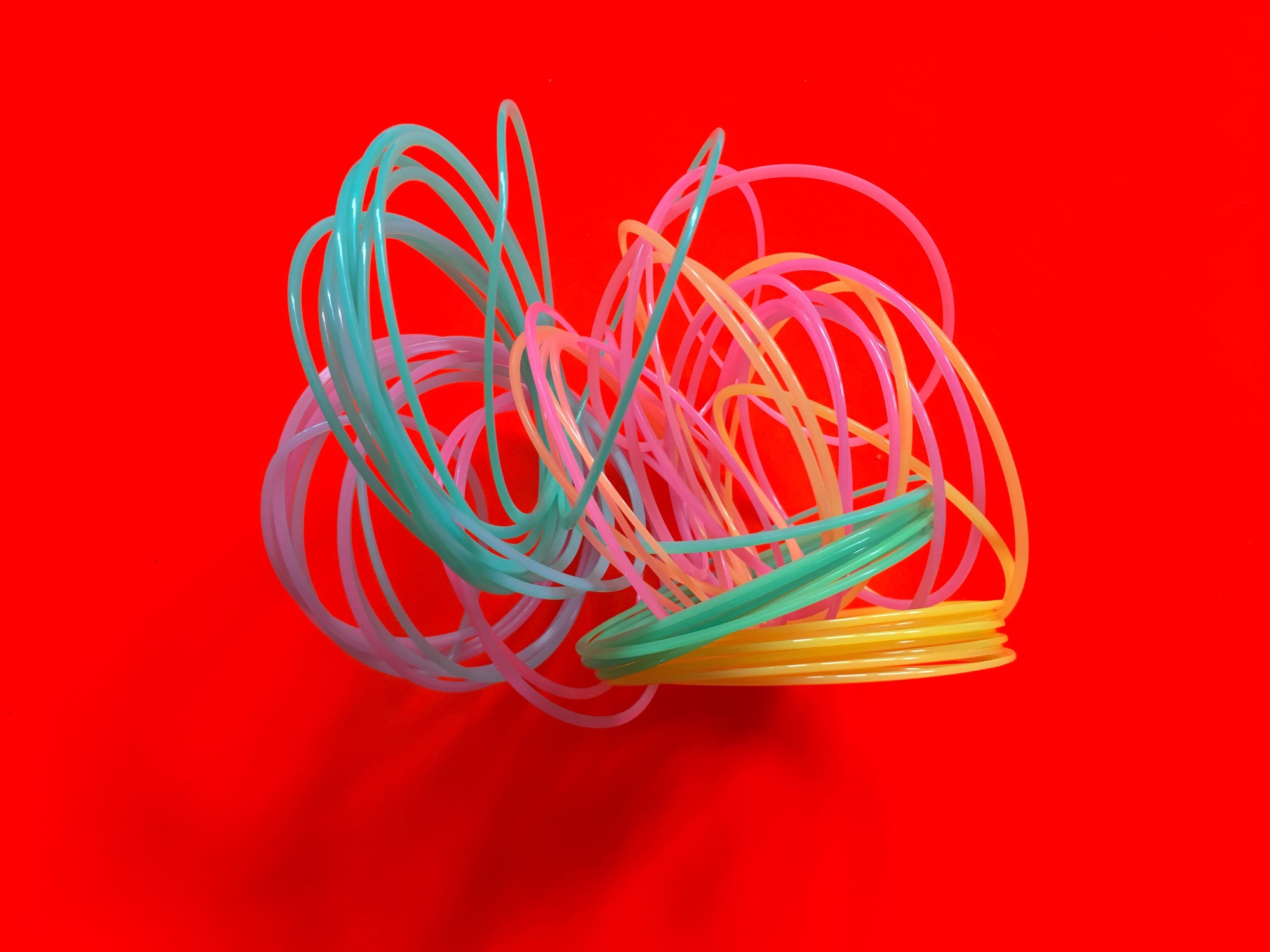 Colorful spring is all tangled up against a bright red background.
