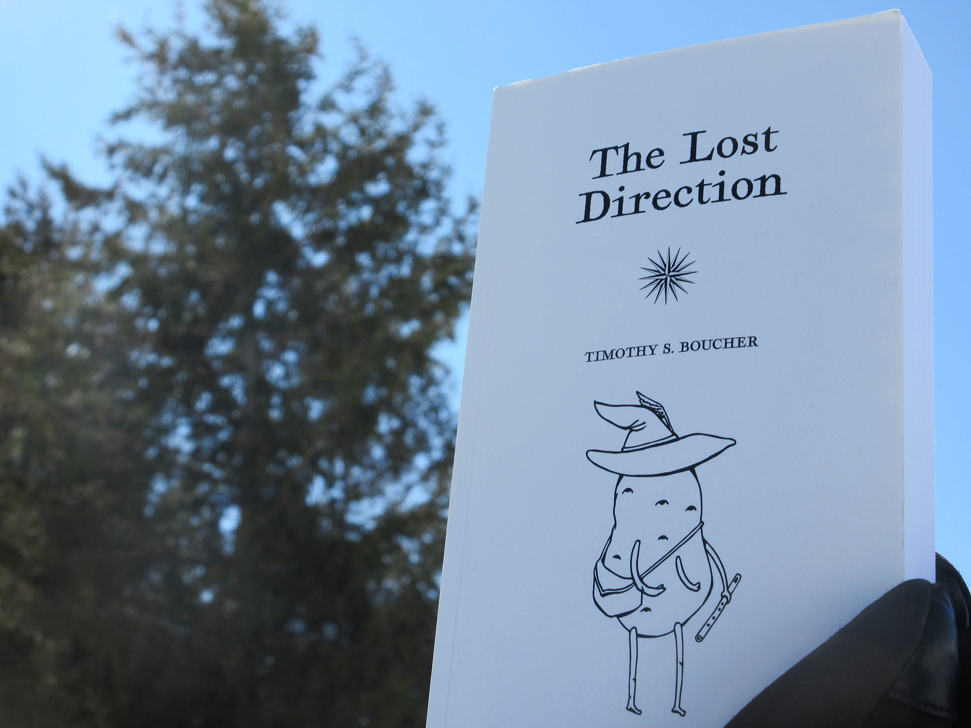 """Book cover: """"The Lost Direction"""" by Timothy S. Boucher (lostbooks.ca)"""