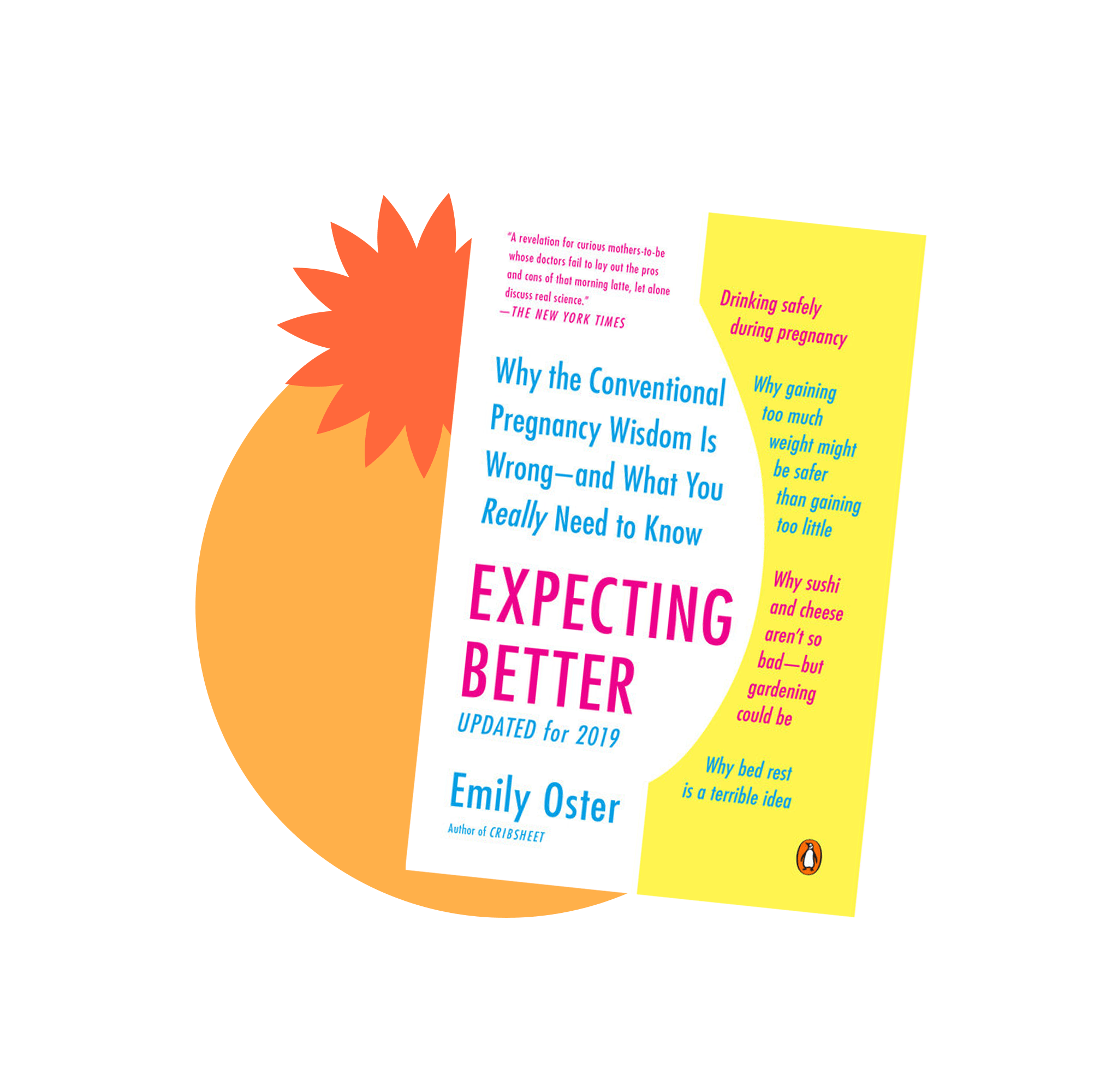 Book jacket cover for Expecting Better by Emily Oster
