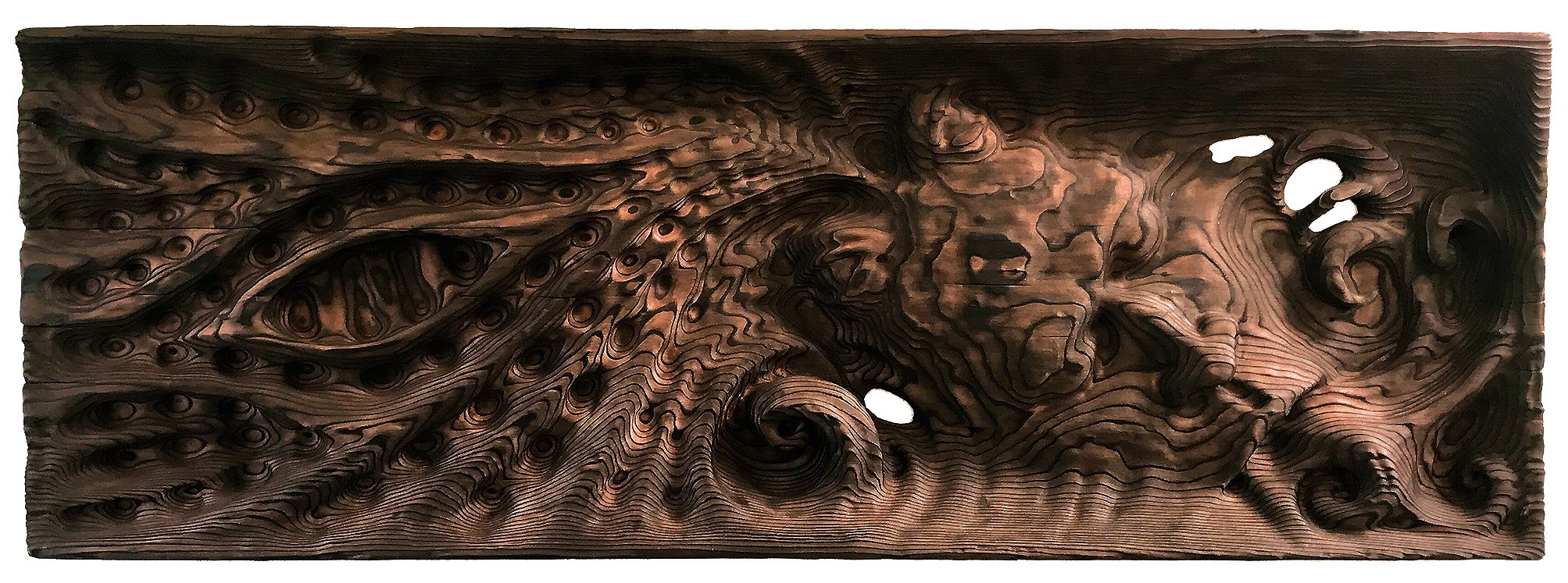 ayahuasca visions showed artist an ancient woodworking