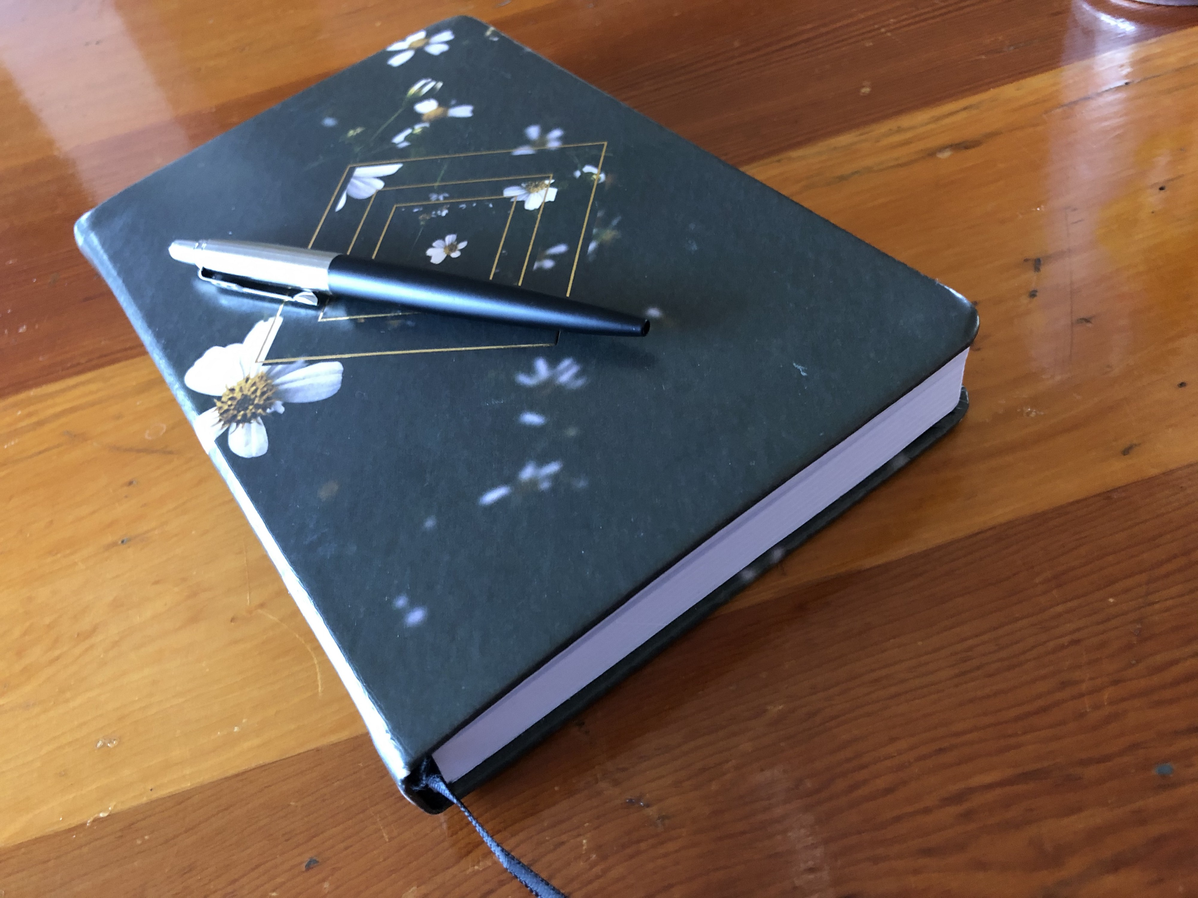 Journal and pen during my 72 hour fast