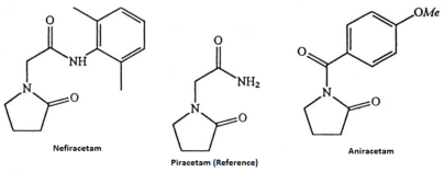 "Nefiracetam: a Gabaergic Racetam and a Bad ""Smart Drug"""