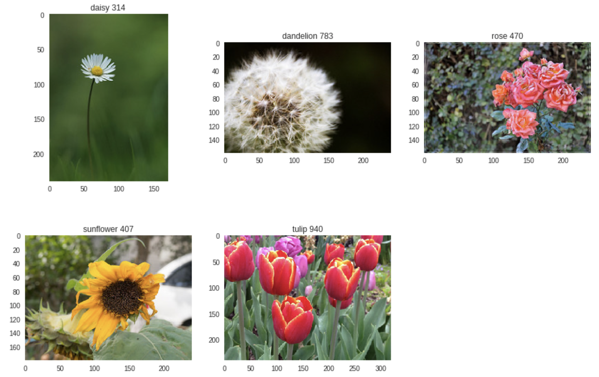 "Three models for Kaggle's ""Flowers Recognition"" Dataset"