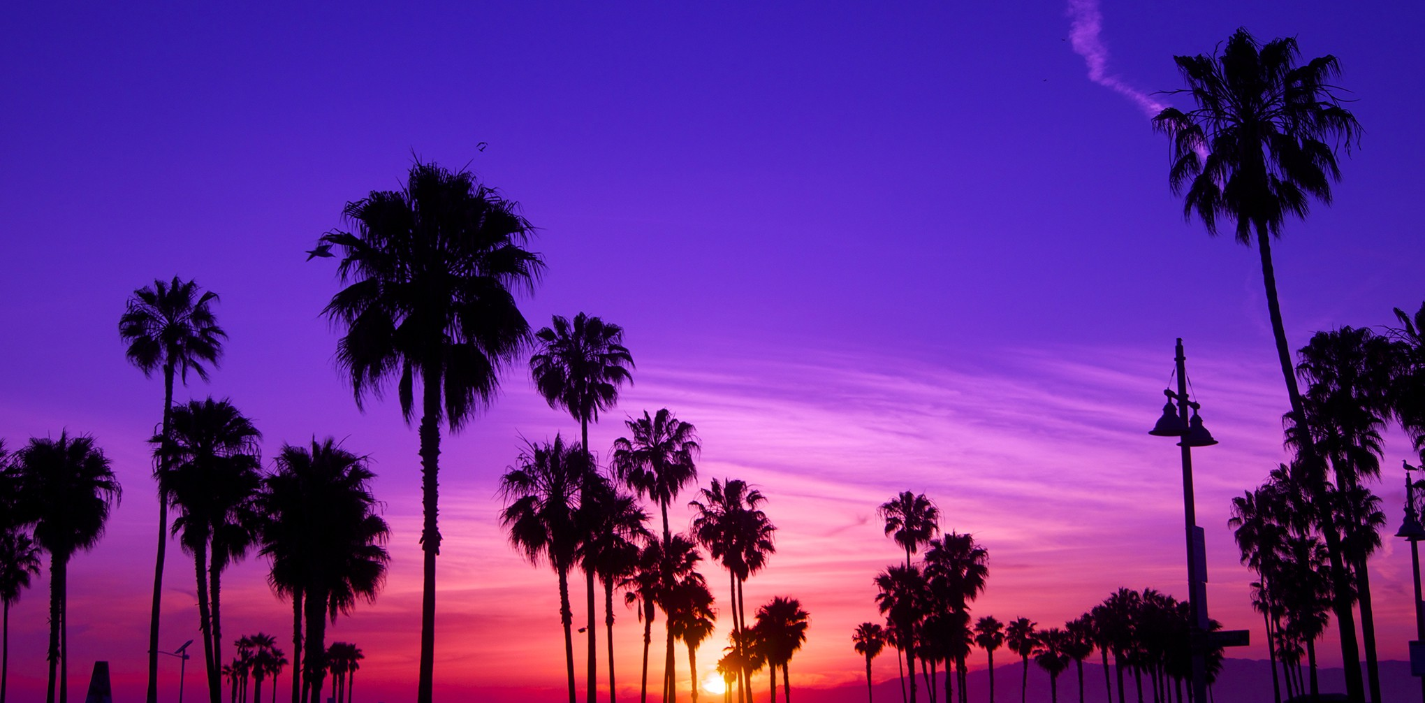 The Ridiculously Funny Things One Overhears In Los Angeles By Mike Mcphate The California Sun
