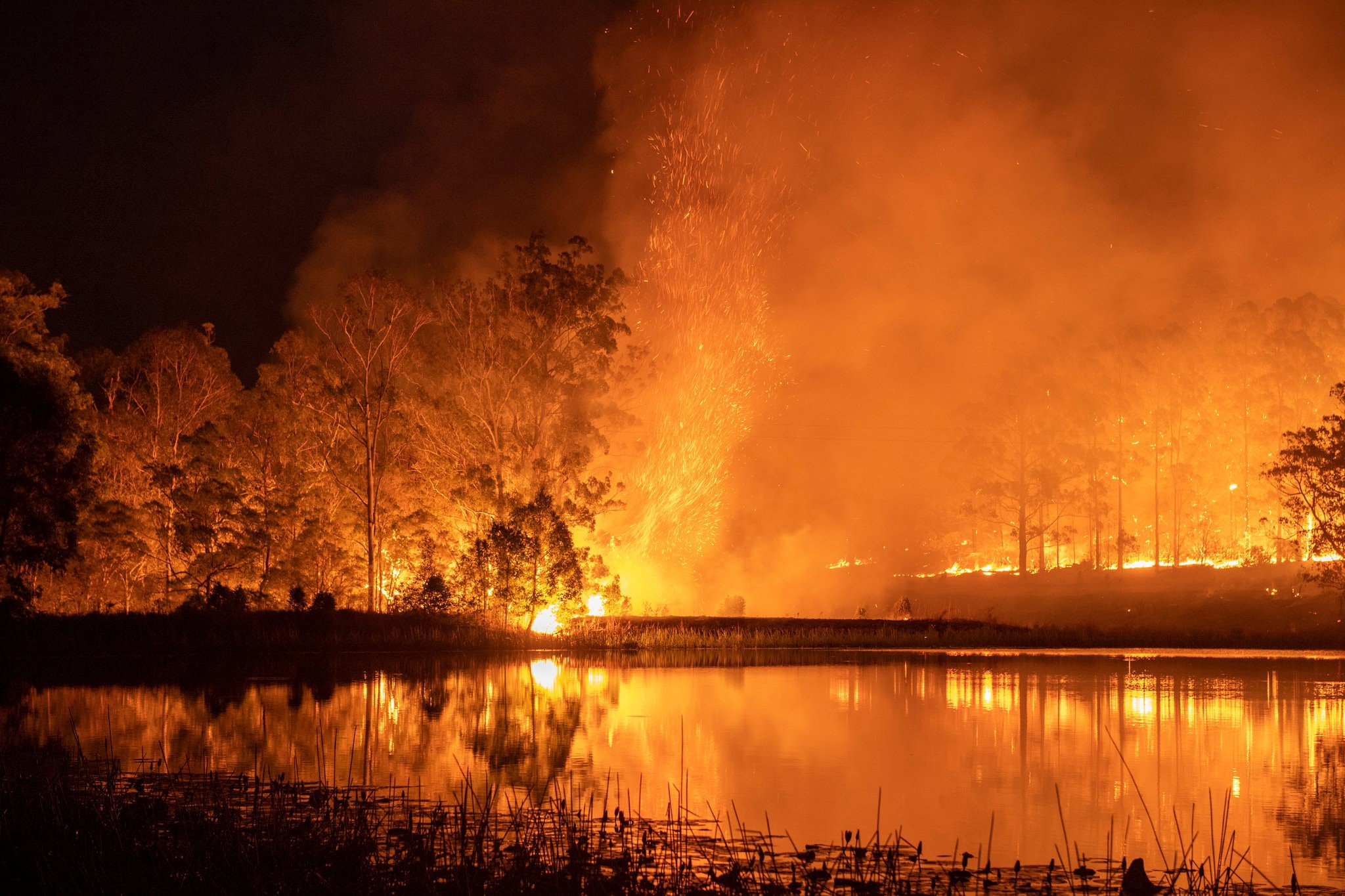 An out-of-control fire in Hillville New South Wales on 12 November 2019 / Matthew Abbott New York Times