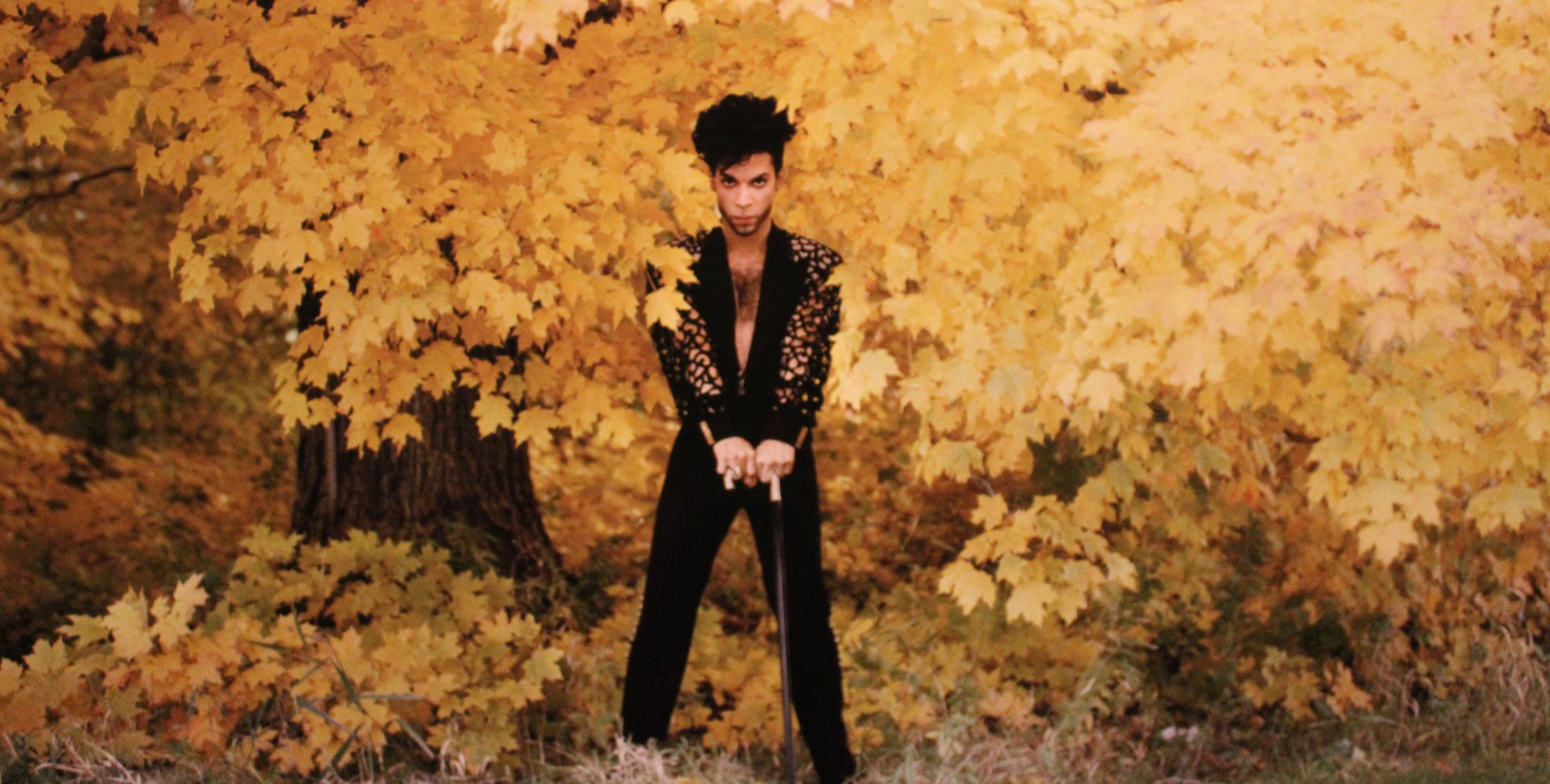 The Top 10 Prince Albums You've Never Heard Of  - Craig Walmsley