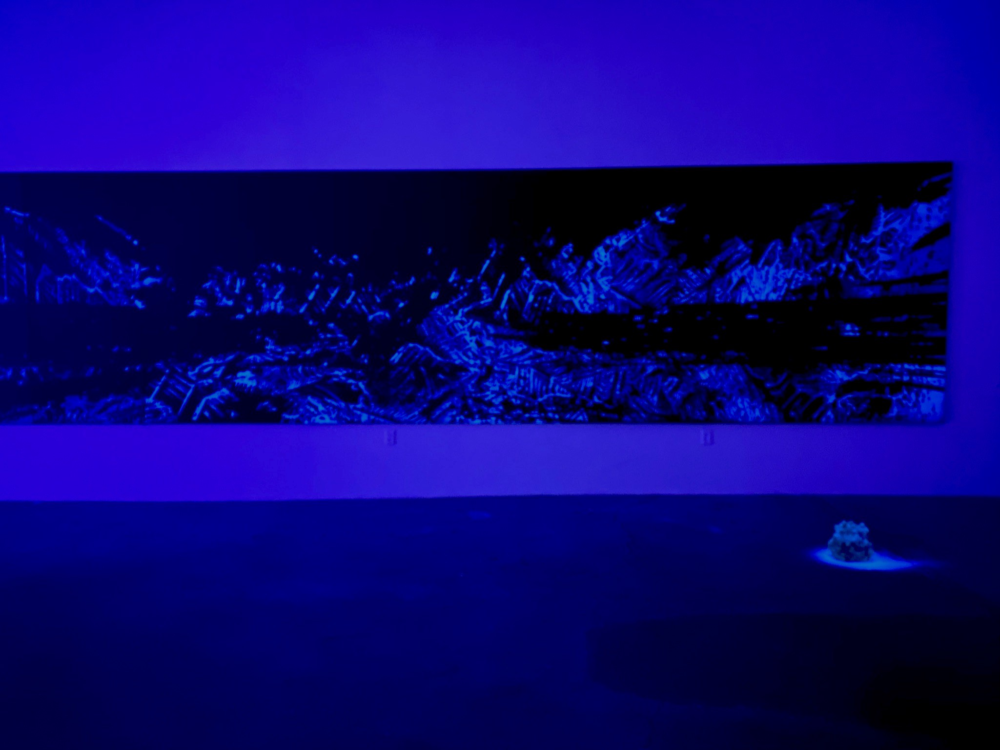 Light art from EDGE OF LIGHT. The installation looks to nature as a means to express humanity's interconnectedness.