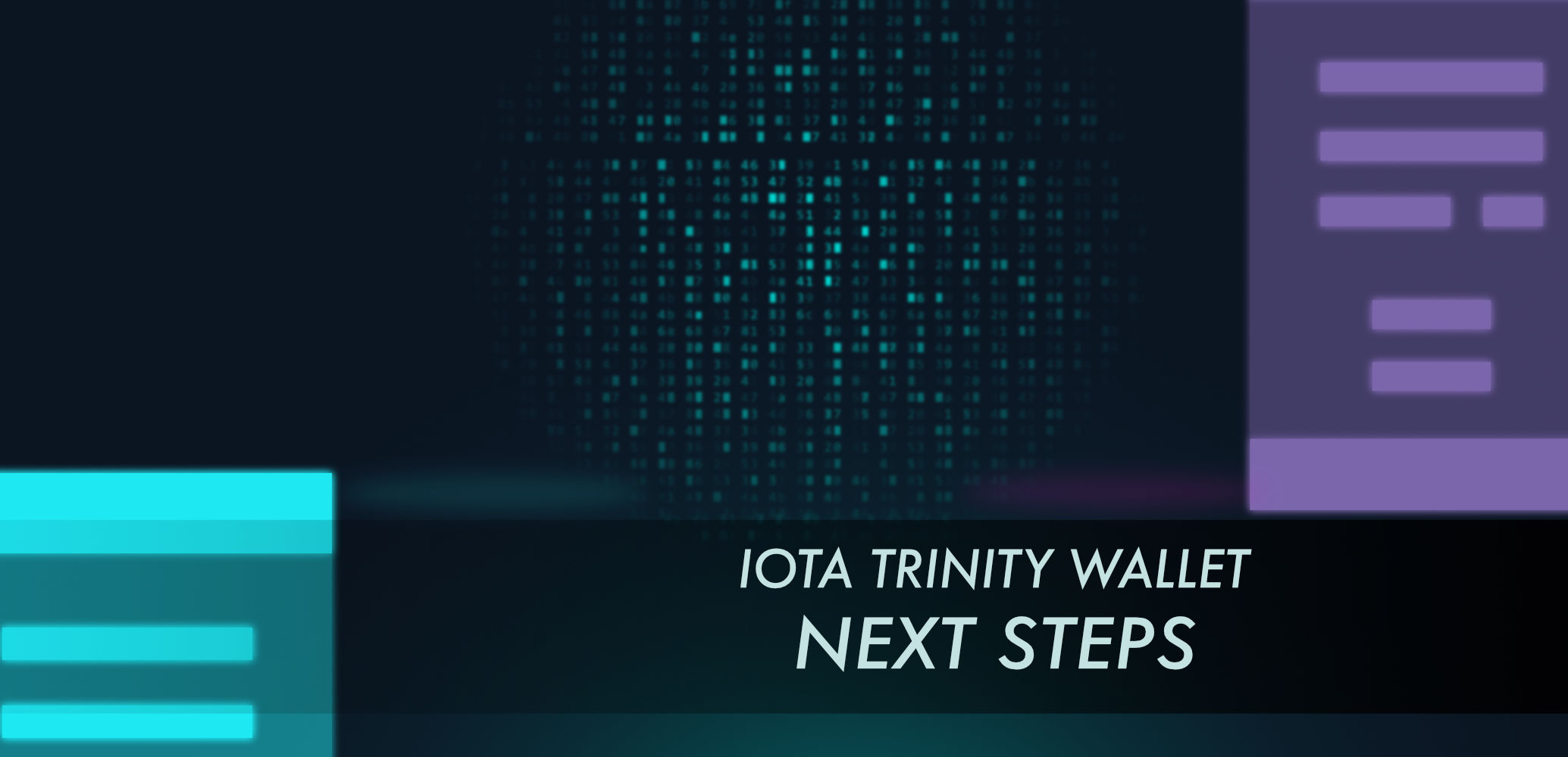 IOTA Trinity Wallet: Next Steps - IOTA