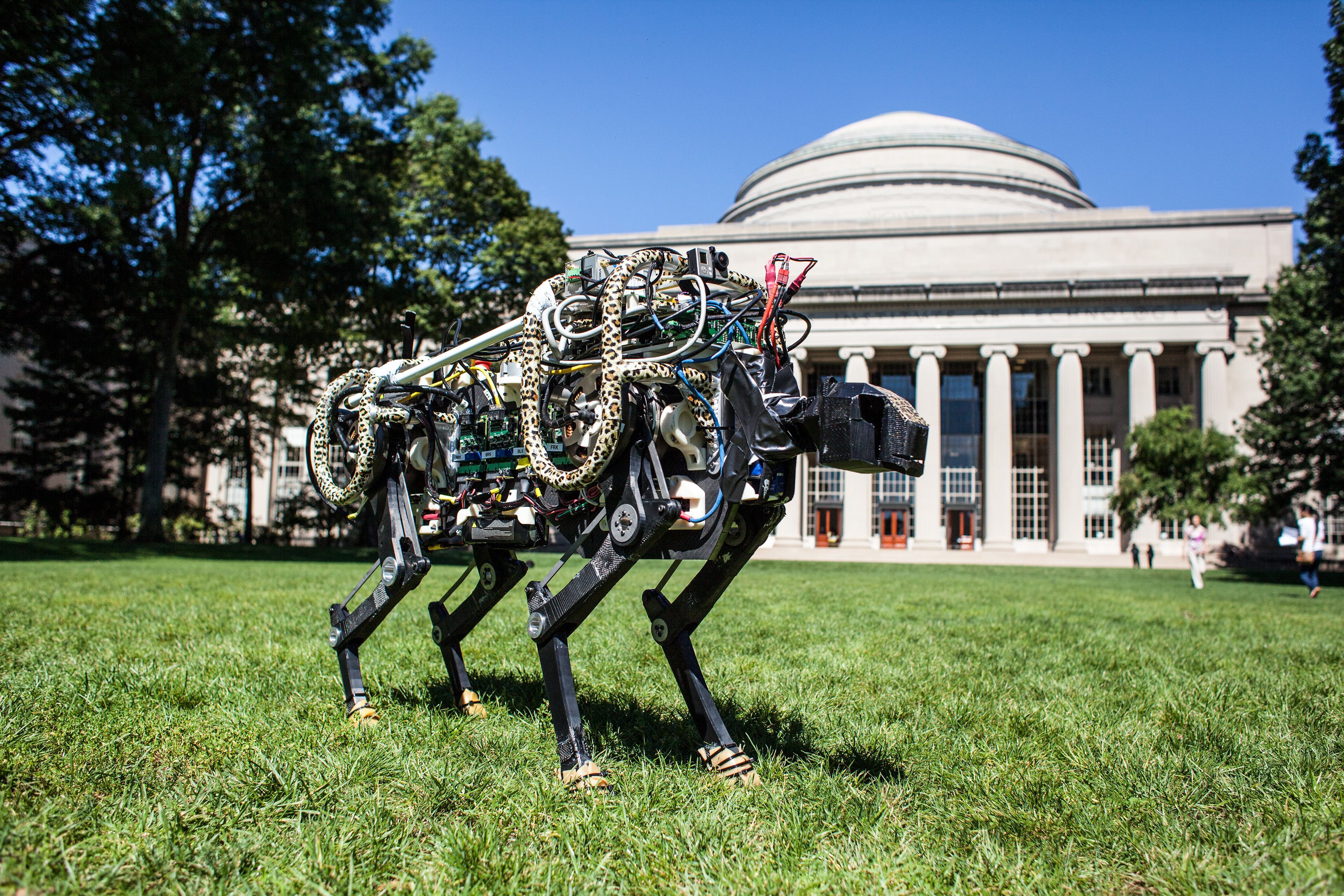 MIT, Best Masters Programs in Machine Learning (ML)