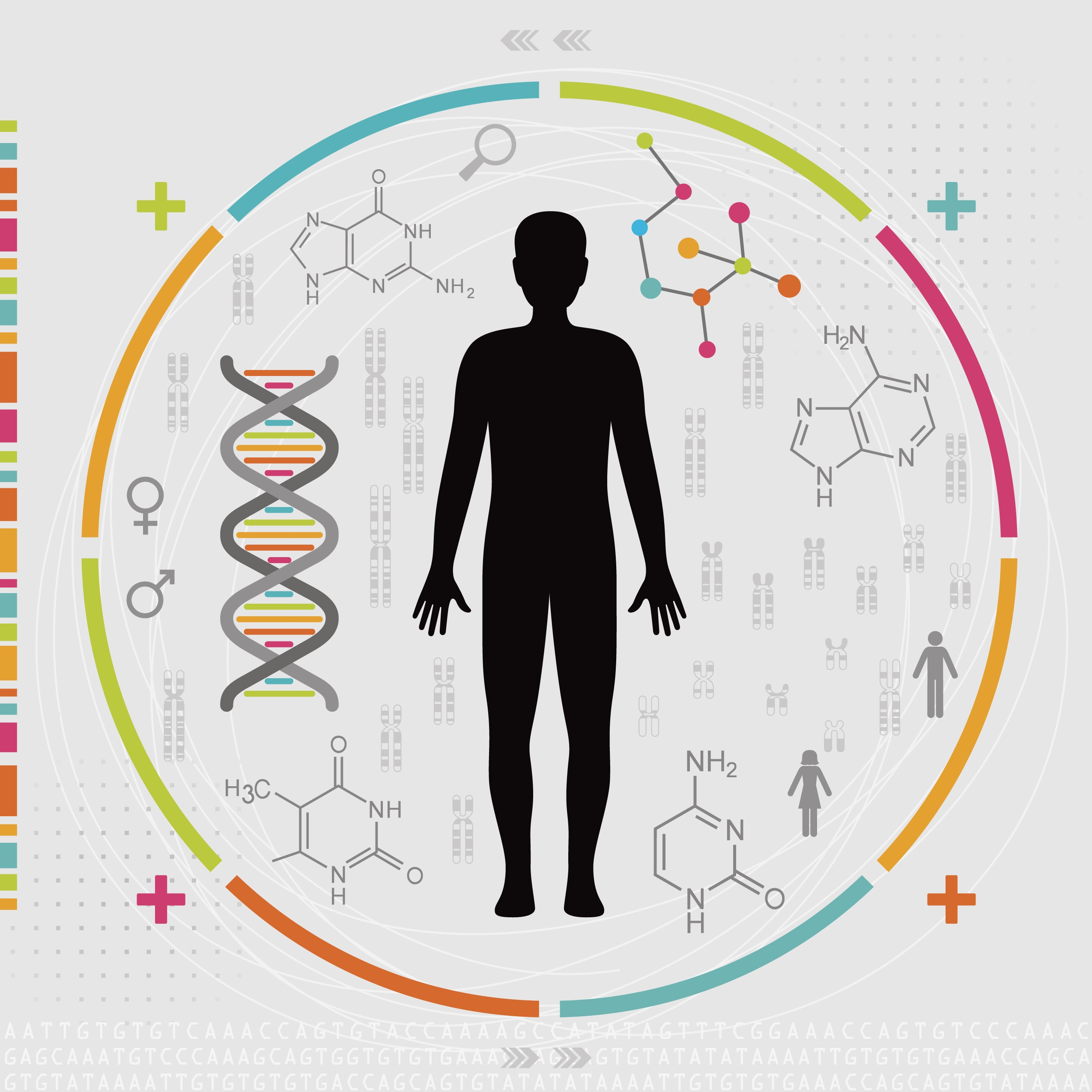 Image result for precision medicine