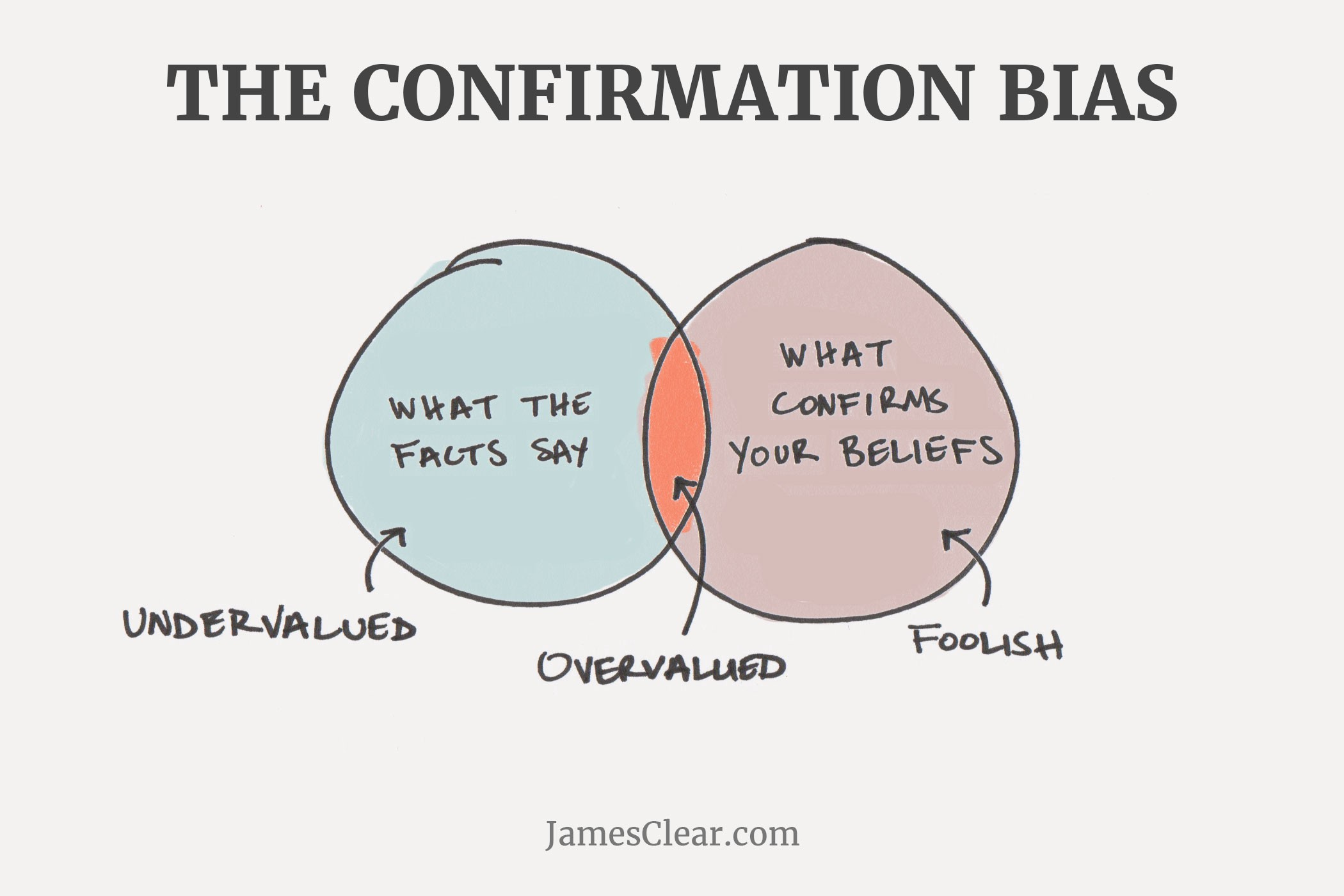 The confirmation bias in UX research — DAY 97 - Human Friendly