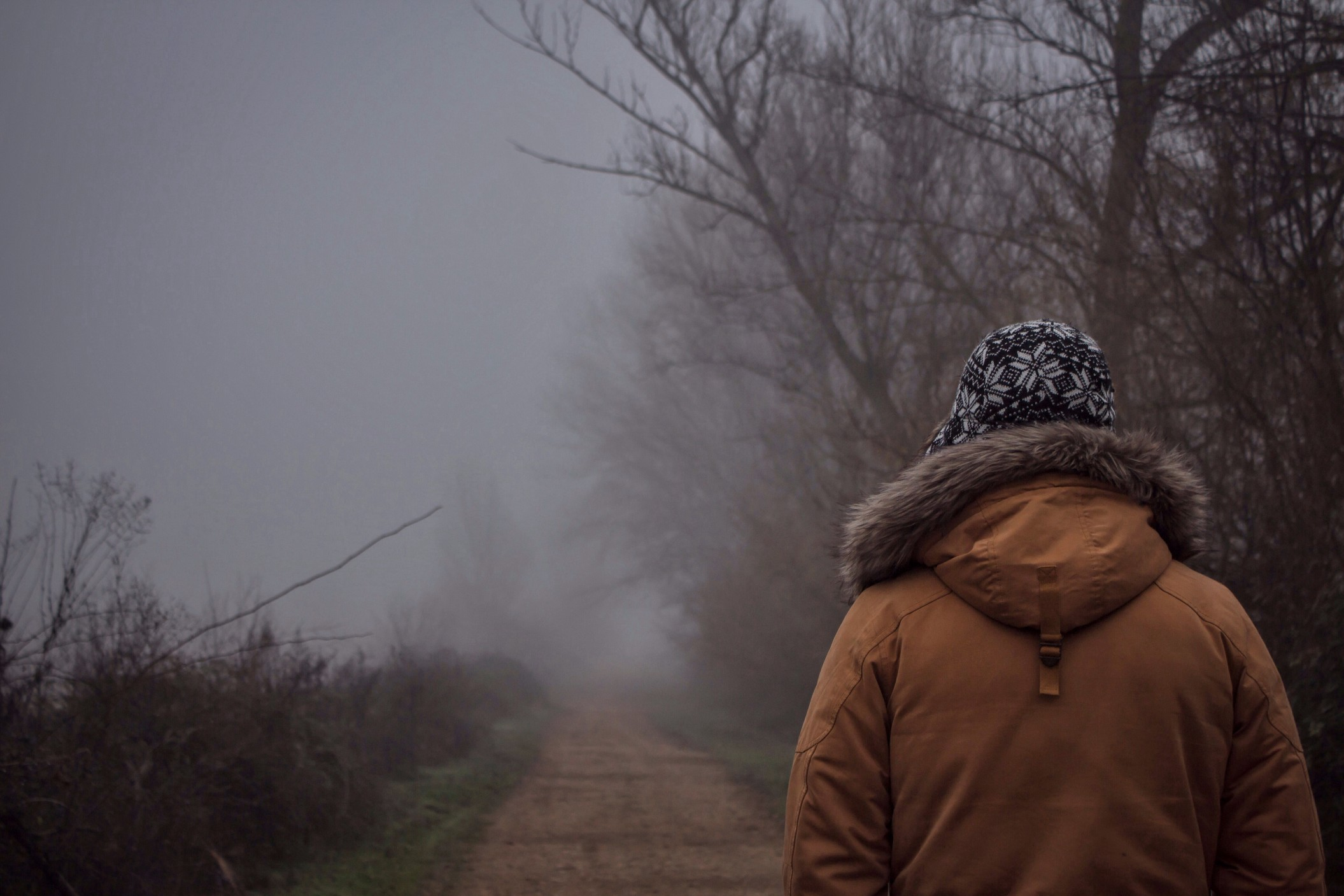 A person walks alone in the cold along a foggy country road.