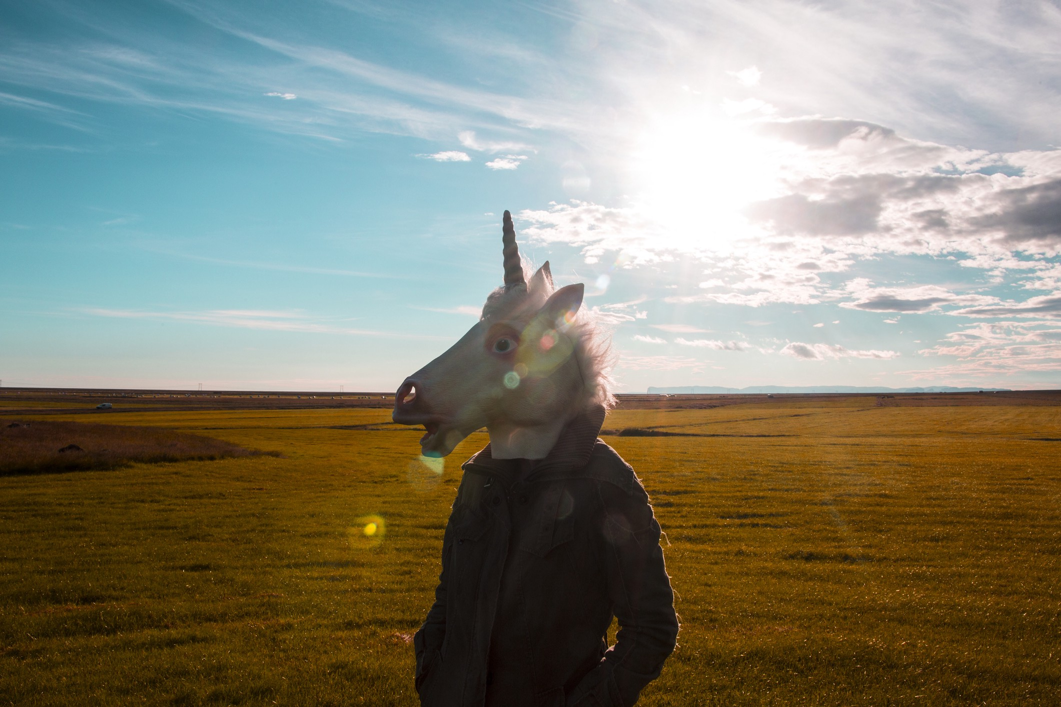 A man wearing a unicorn mask standing in a sunny field.