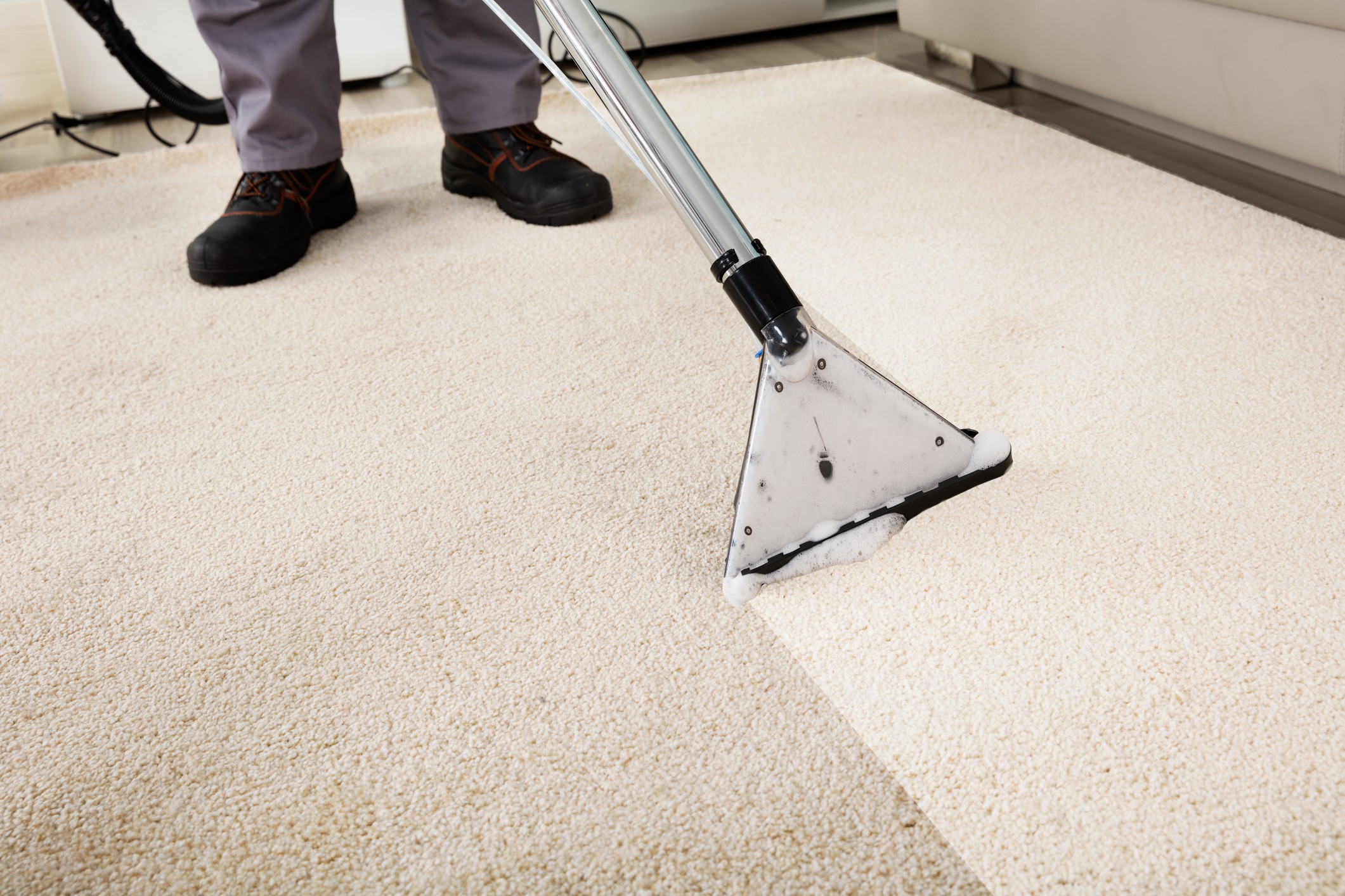 Why It S Important To Professionally Clean Your Carpets