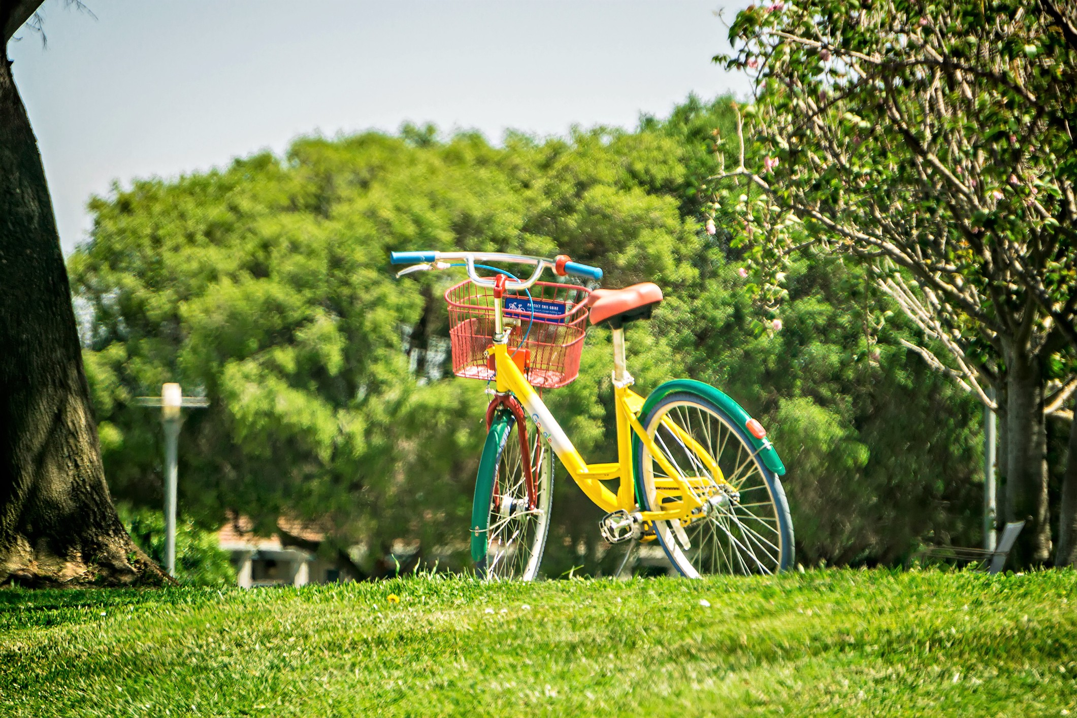 A photo of a Google bike parked on a grassy lawn.