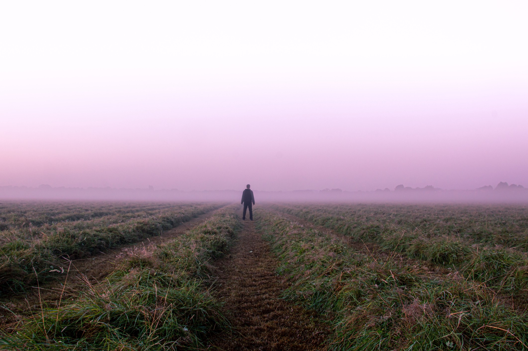 A mysterious lone figure standing in a field on a beautiful early misty morning.