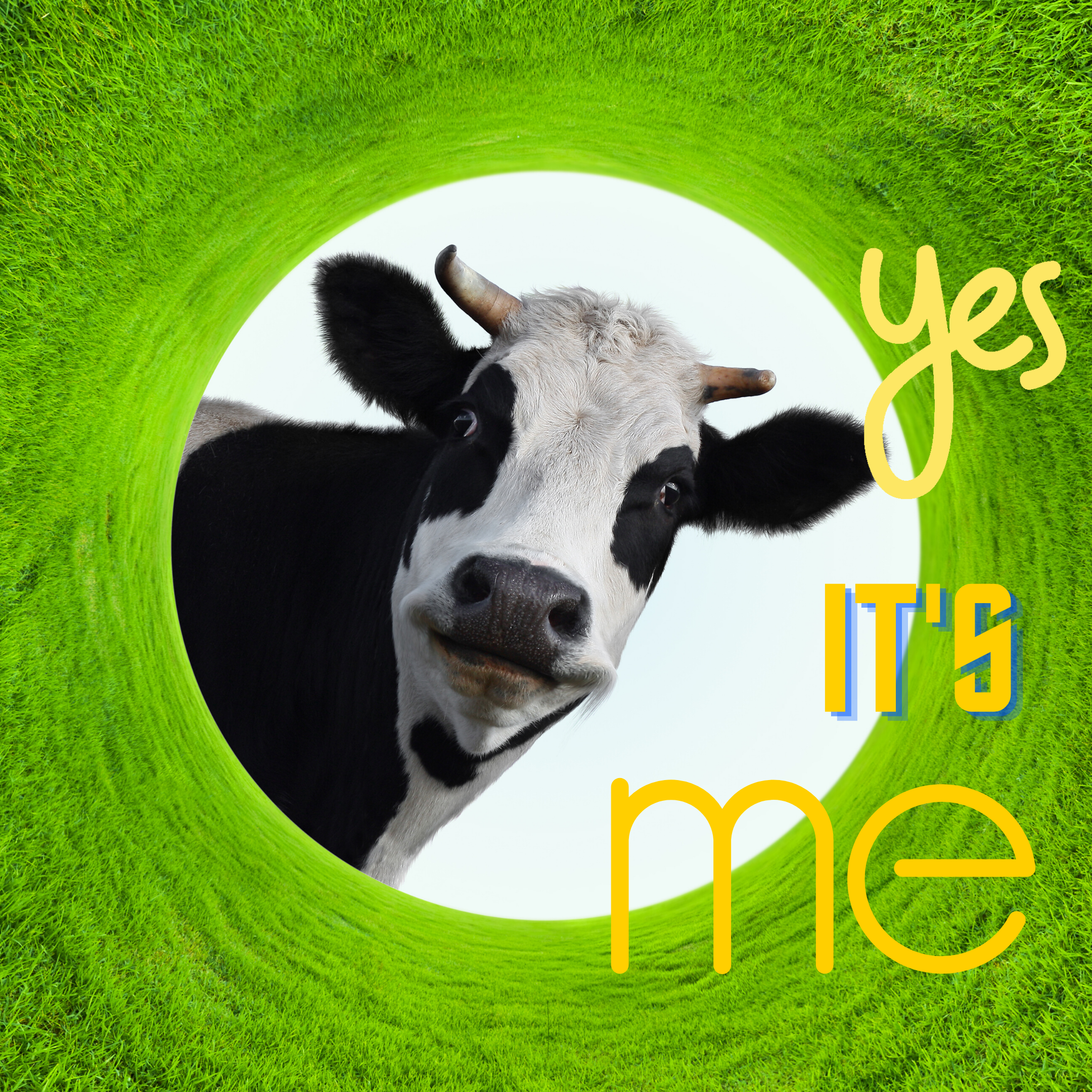 "Happy smiling cow in a natural green grass fame — Saying, ""Yes, it's me"""