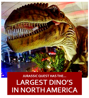 Jurassic Quest — Conway Expo  - Lexie Young - Medium