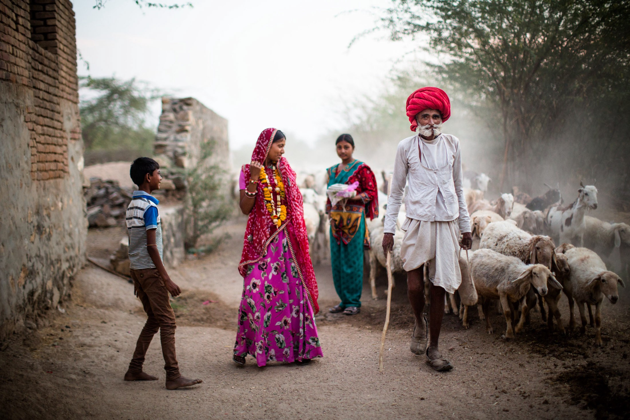 Rabari are camel traders and herders of livestock. Most of these tribal nomads have settled in agricultural villages, like Sena, in the deasert state of Rajasthan.