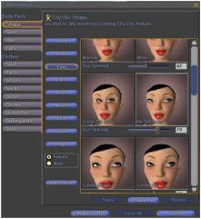 What Building Second Life Taught Me About Online Identity