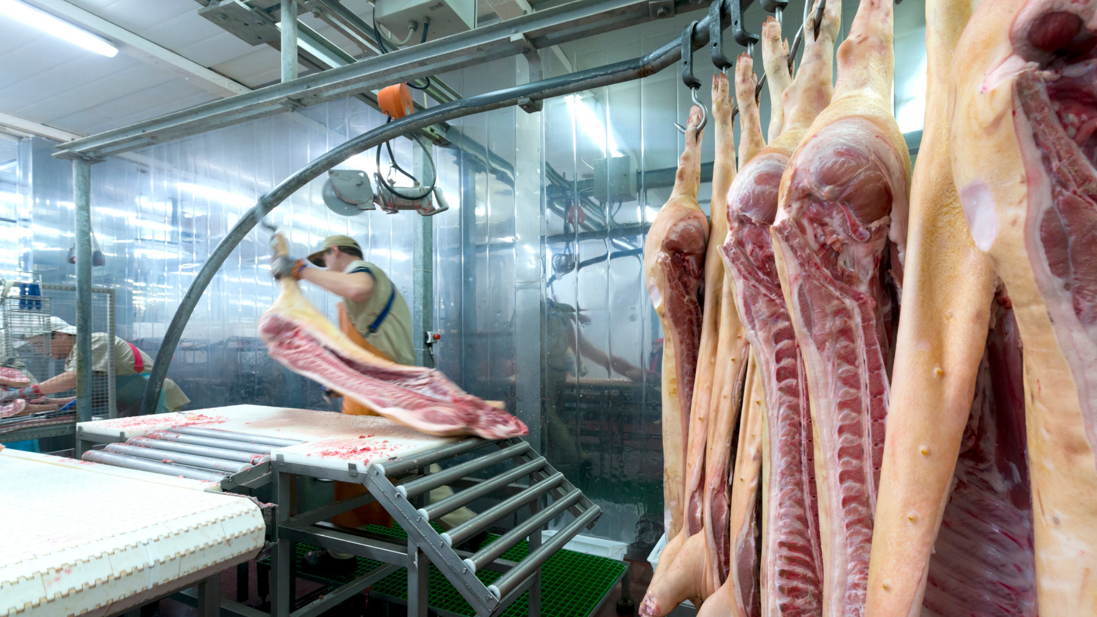 Meatpacking worker in a processing plant