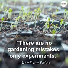 There are no gardening mistakes only experiments