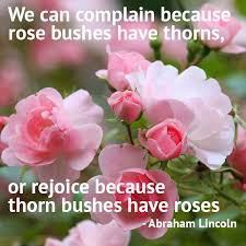 Abe Lincoln we can love roses even with the thorns (paraphrase)