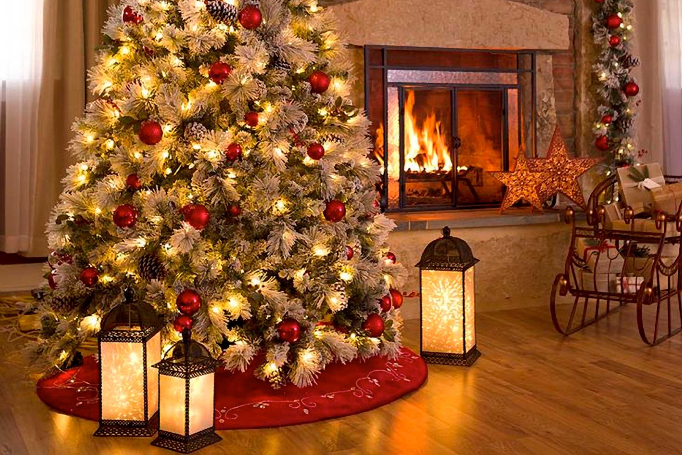 Cleaner Air for Christmas? Then, a Christmas Tree May Not ...