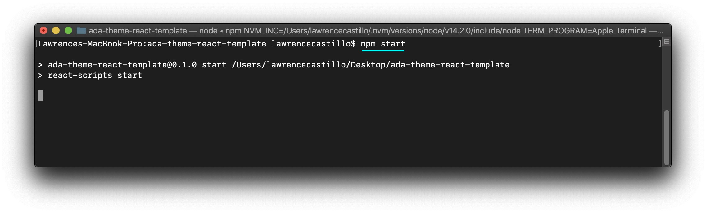 "Screenshot showing how to run the app using ""npm start"" from the Mac Terminal."