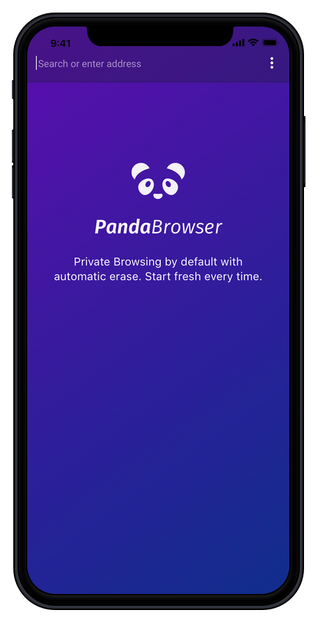 PandaBrowser launch screen