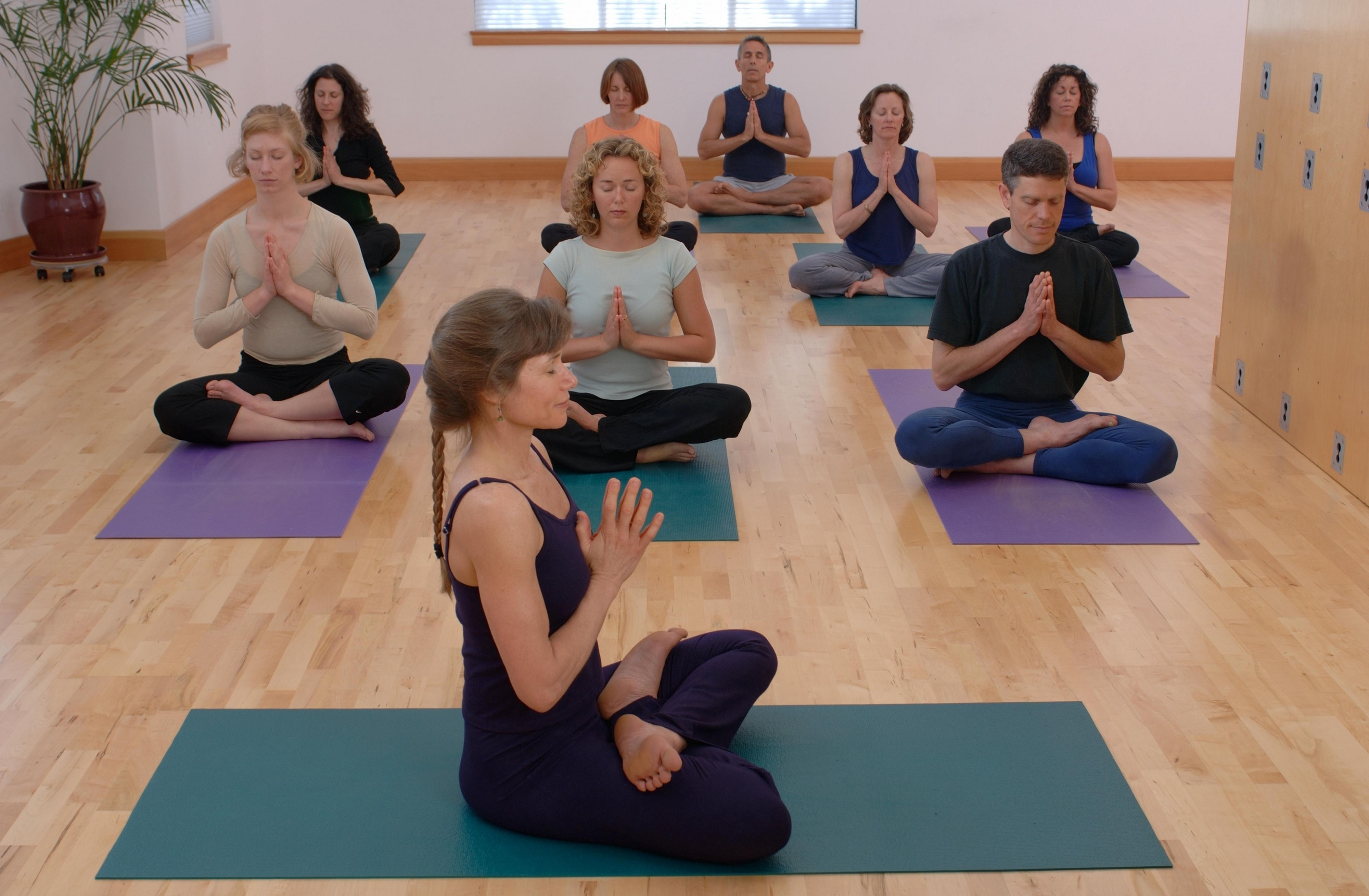 Are You Looking For Yoga Studio Software By My Best Studio Medium