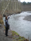 Photo: Mobile tracking of lamprey on the Elwha River, Credit: Lower Elwha Klallam Tribe